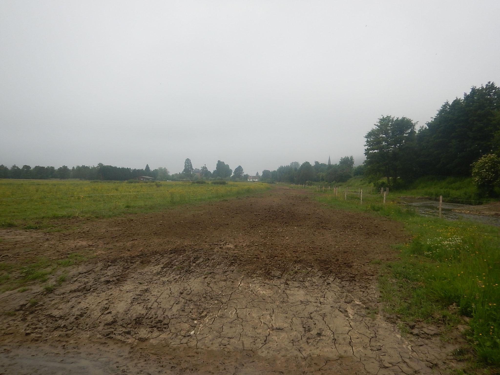Remise en état de la parcelle et des zones d'accès du chantier.