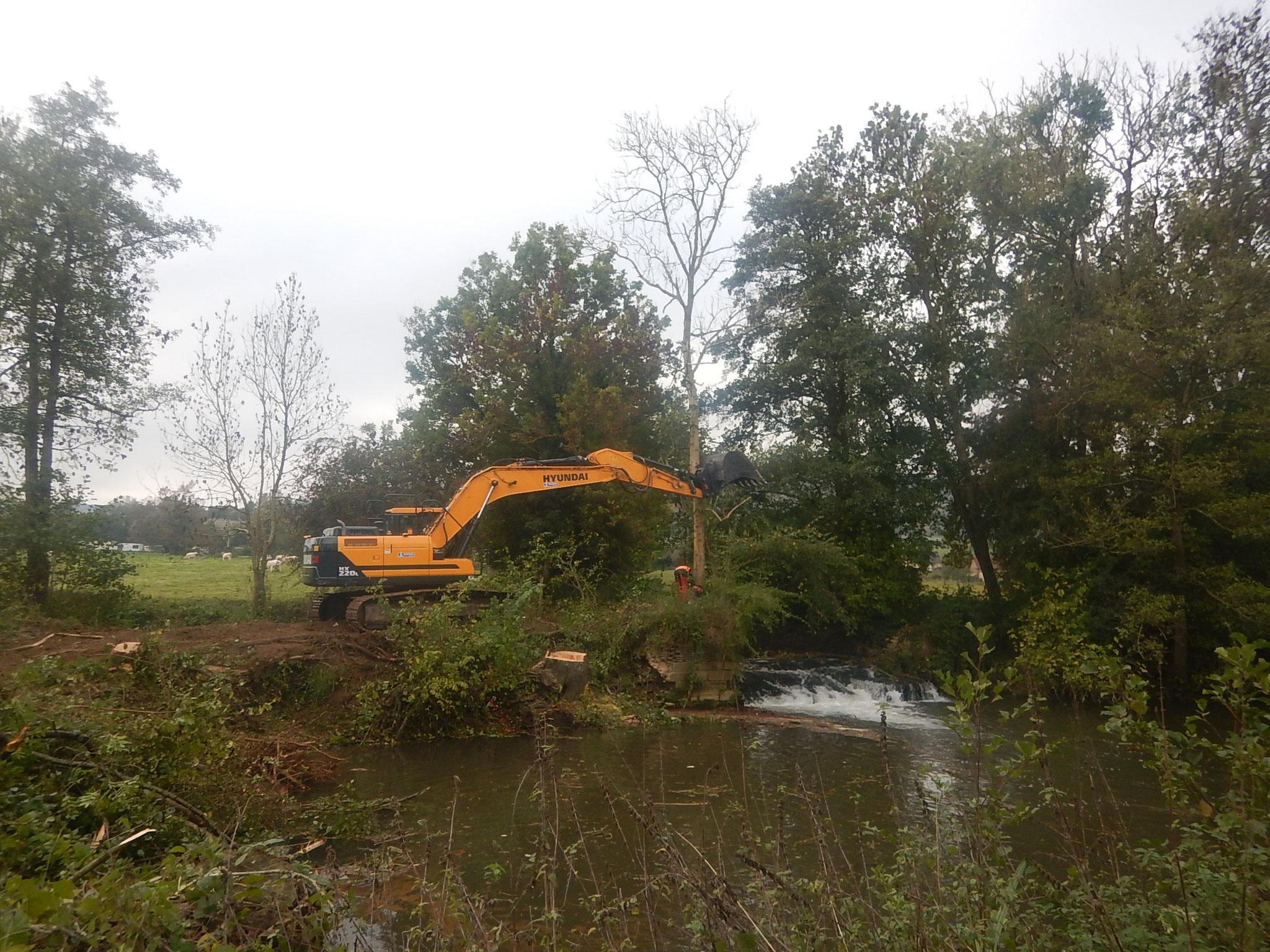 Abattage des arbres se trouvant sur le nouveau tracé de la rivière
