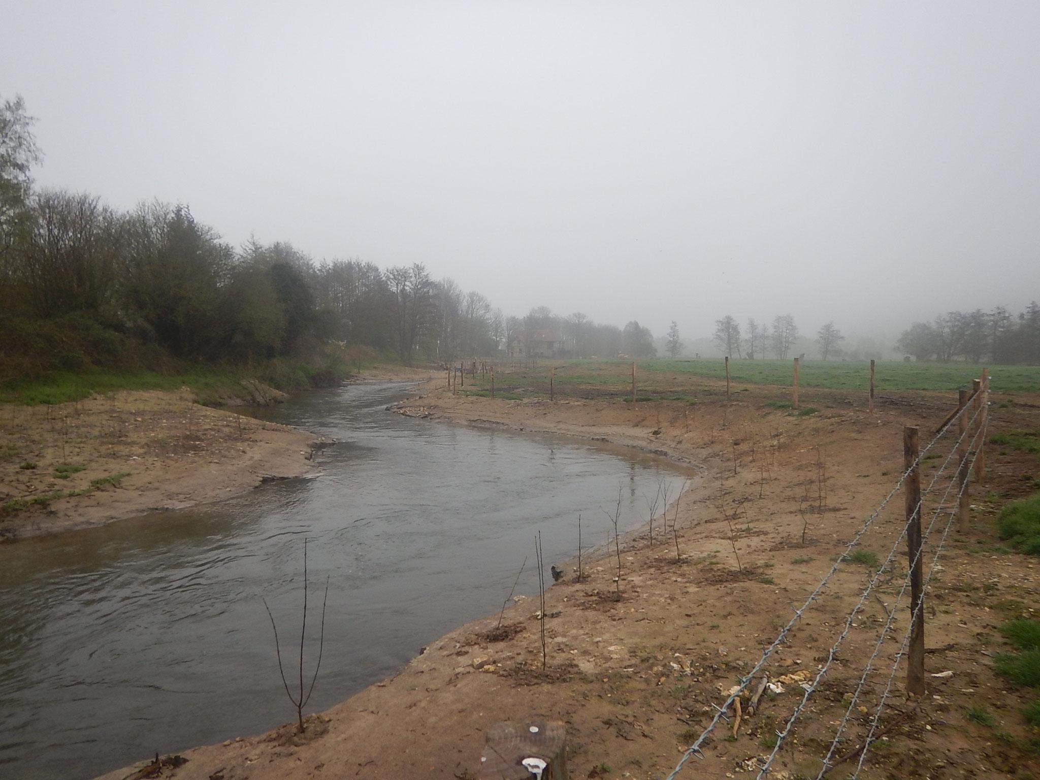 Plantation des berges et installation de clôtures.