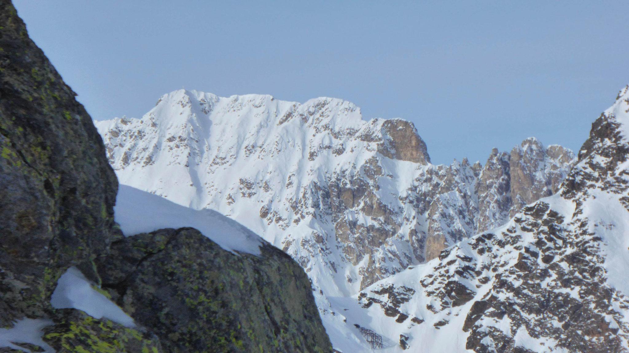 Schneeberger Weißen