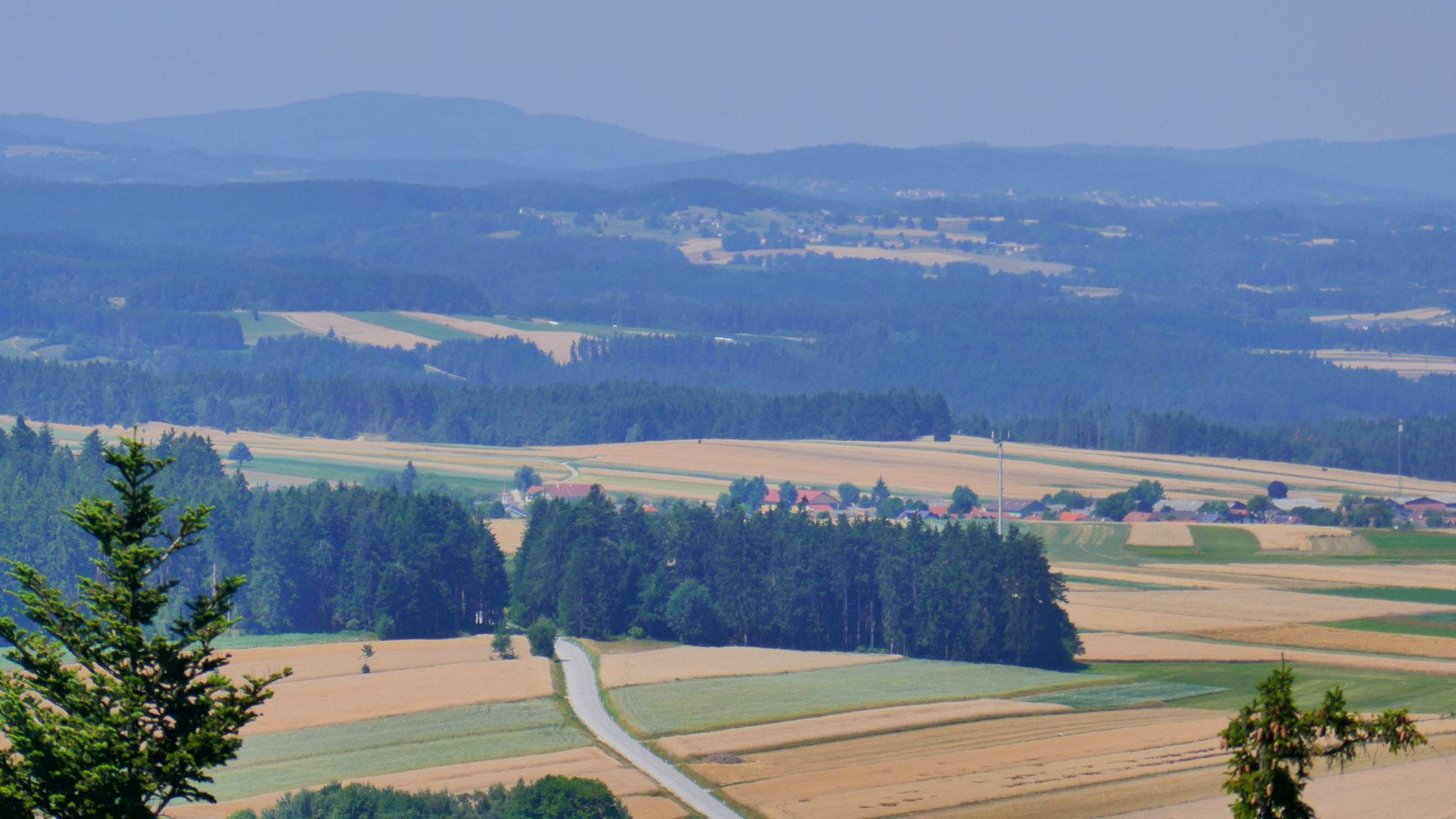 Am Horizont die Vysoka (1.034m) im Böhmerwald