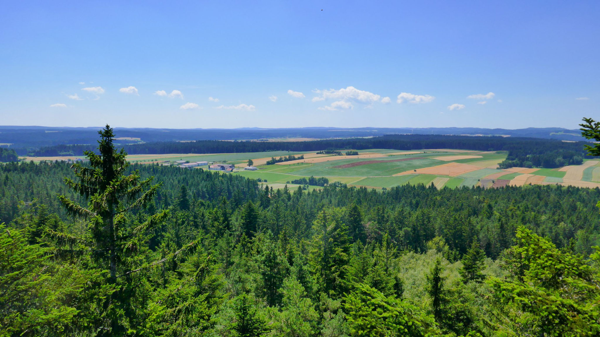 Nach Süden zum Weinsberger Wald
