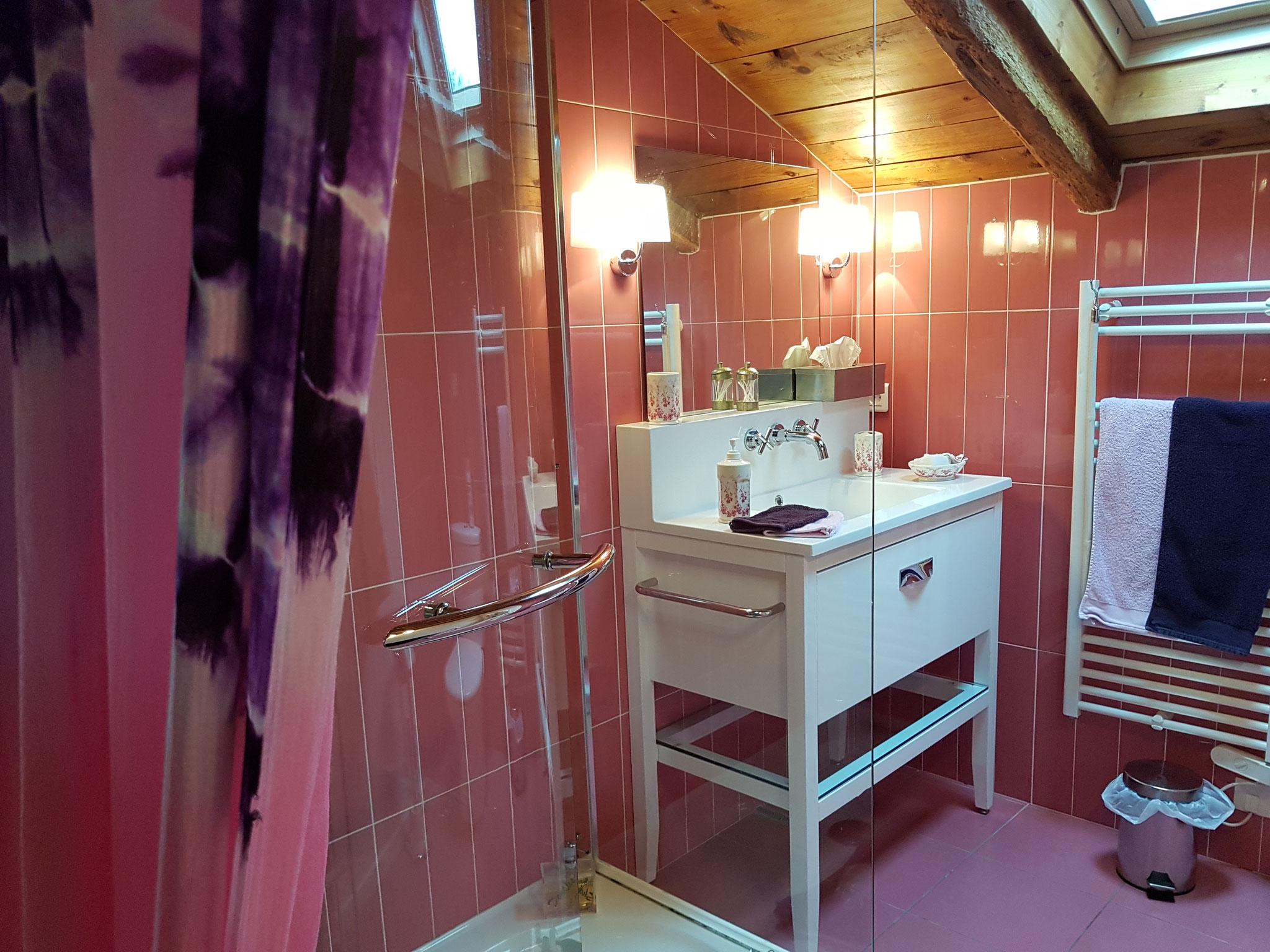 chambre Amarante salle de douche