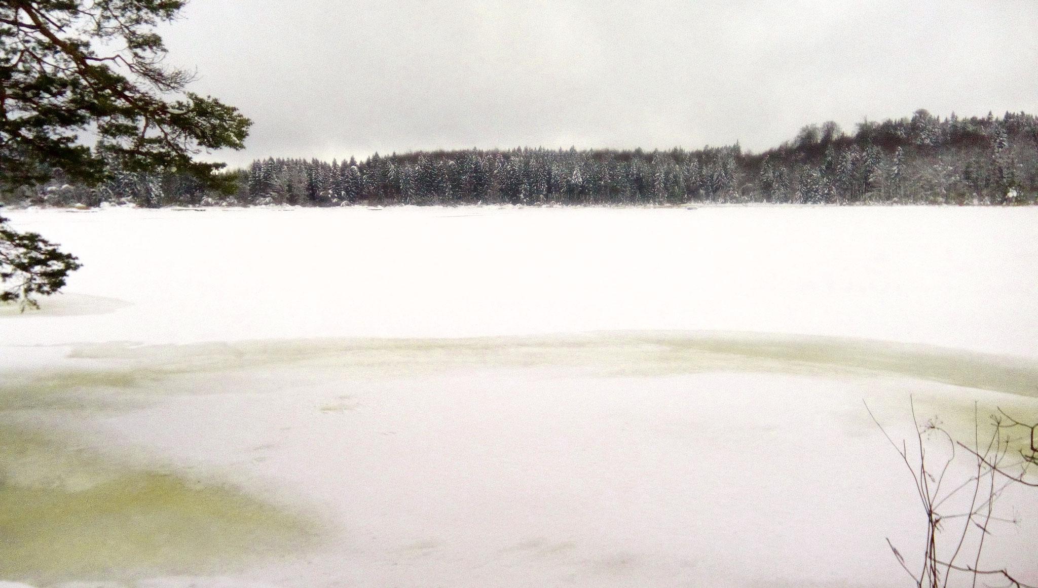 Blick auf den See von der Räuberinsel