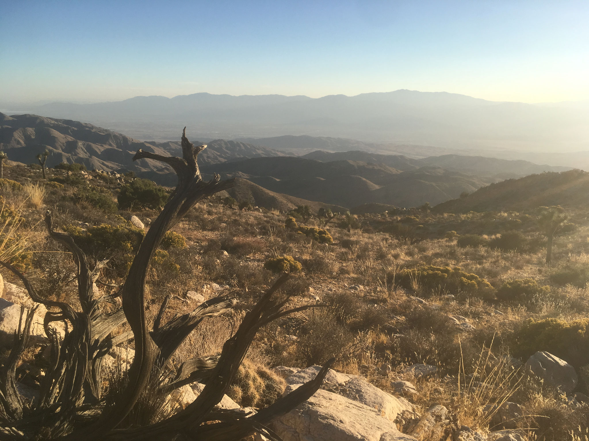 Joshua Tree National Park (faille de San Andrea & Coachella Valley)