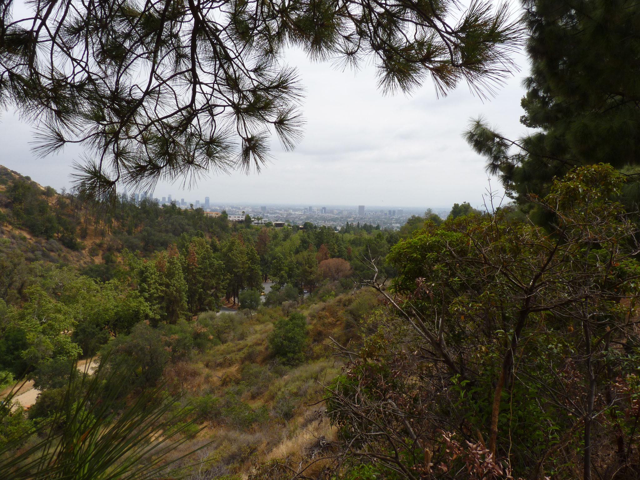 Vue sur le Downtown du Griffith Observatory