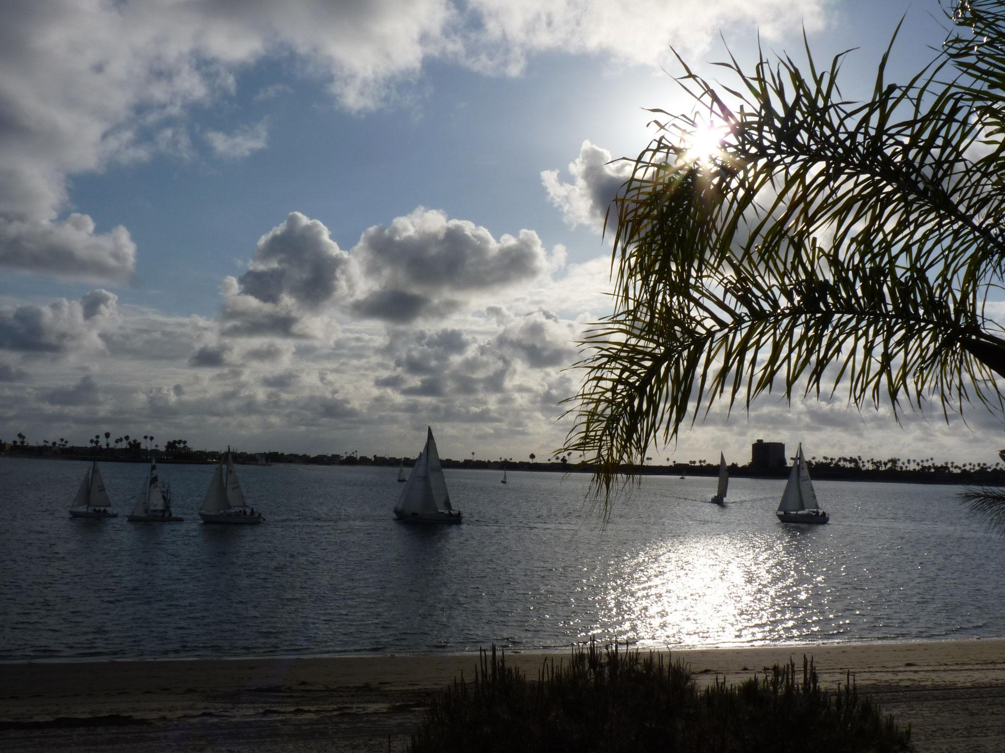 Vue sur la baie de San Diego (de chez John)
