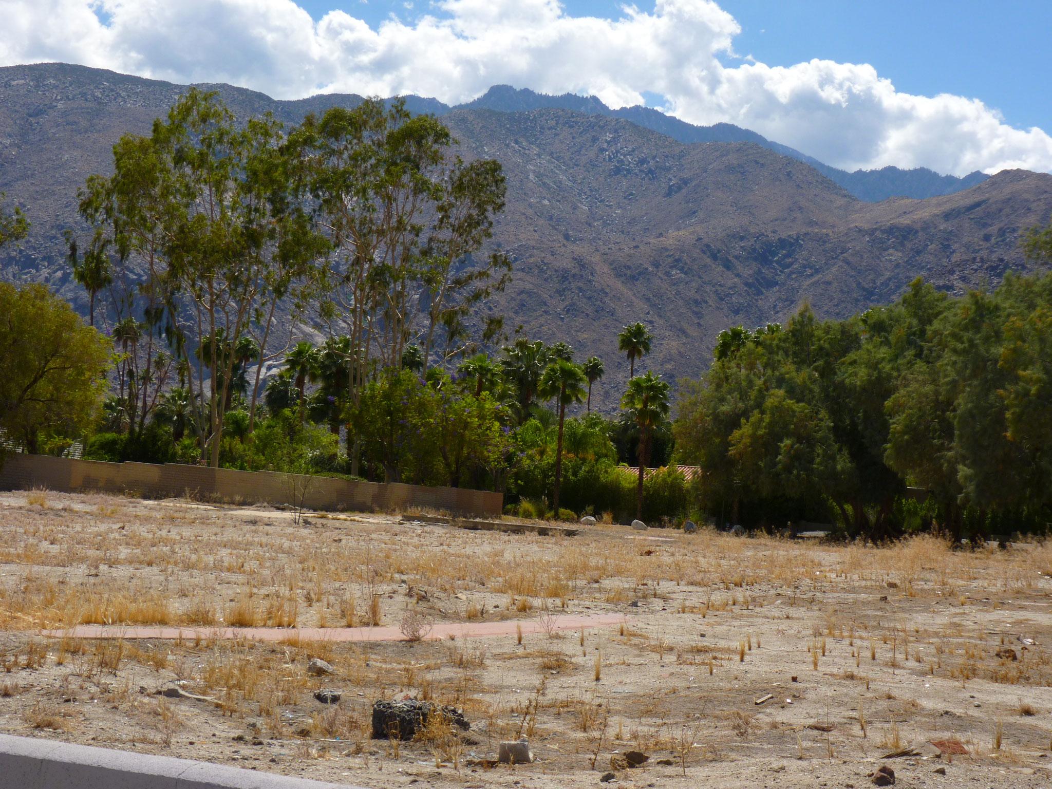 Sur la route de Palm Springs