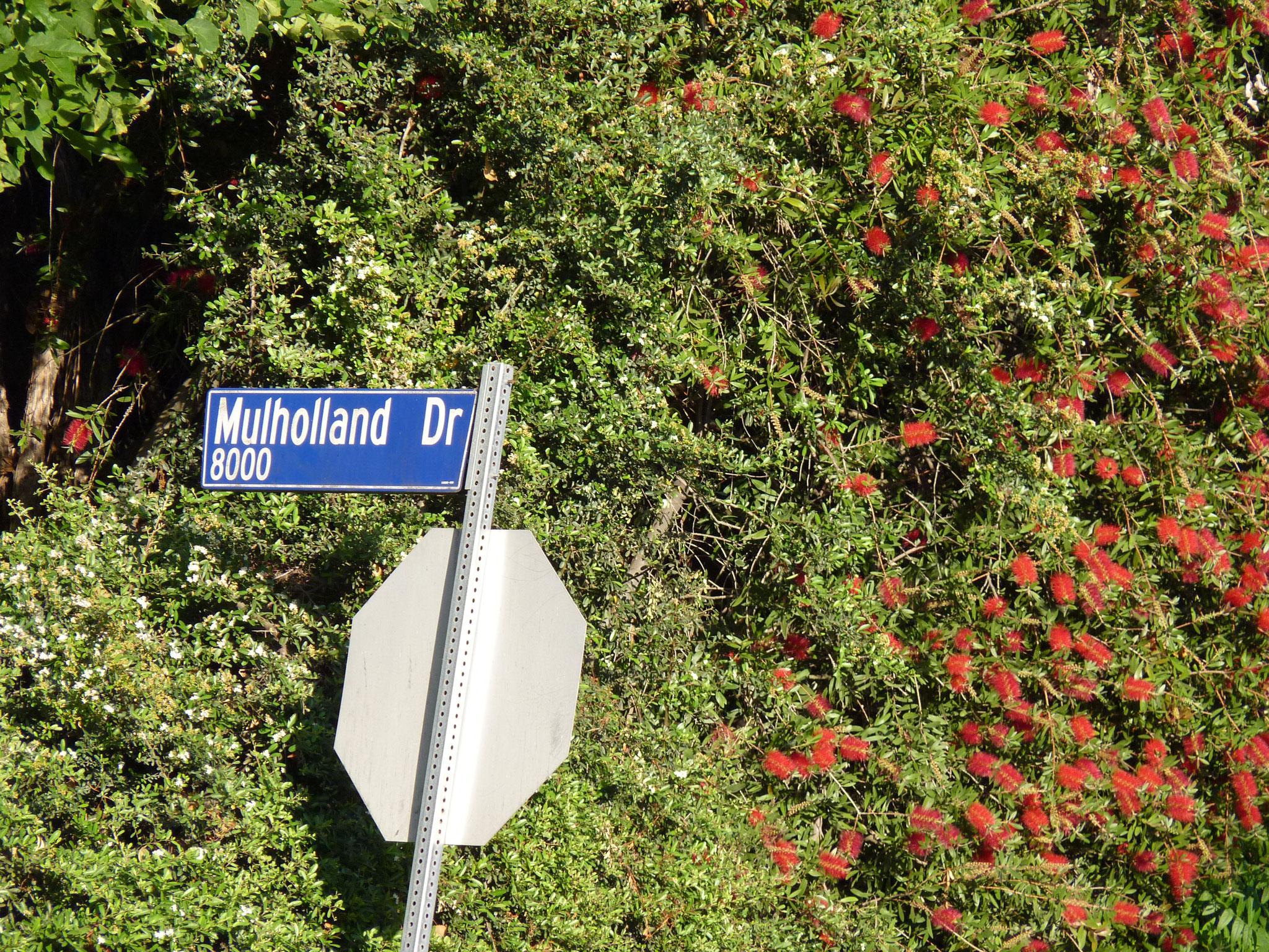 Mulholand Drive