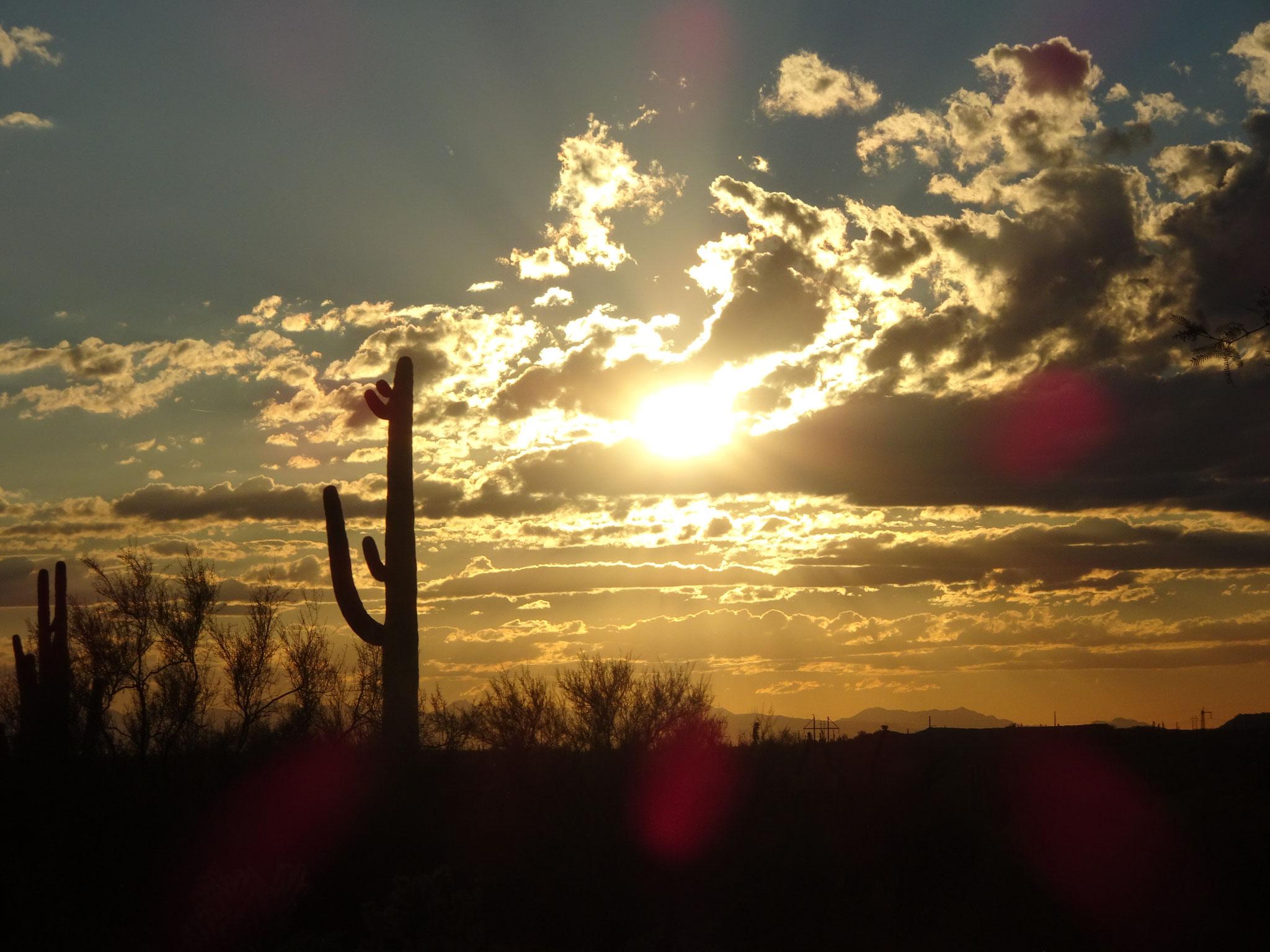 Scottsdale (AZ)