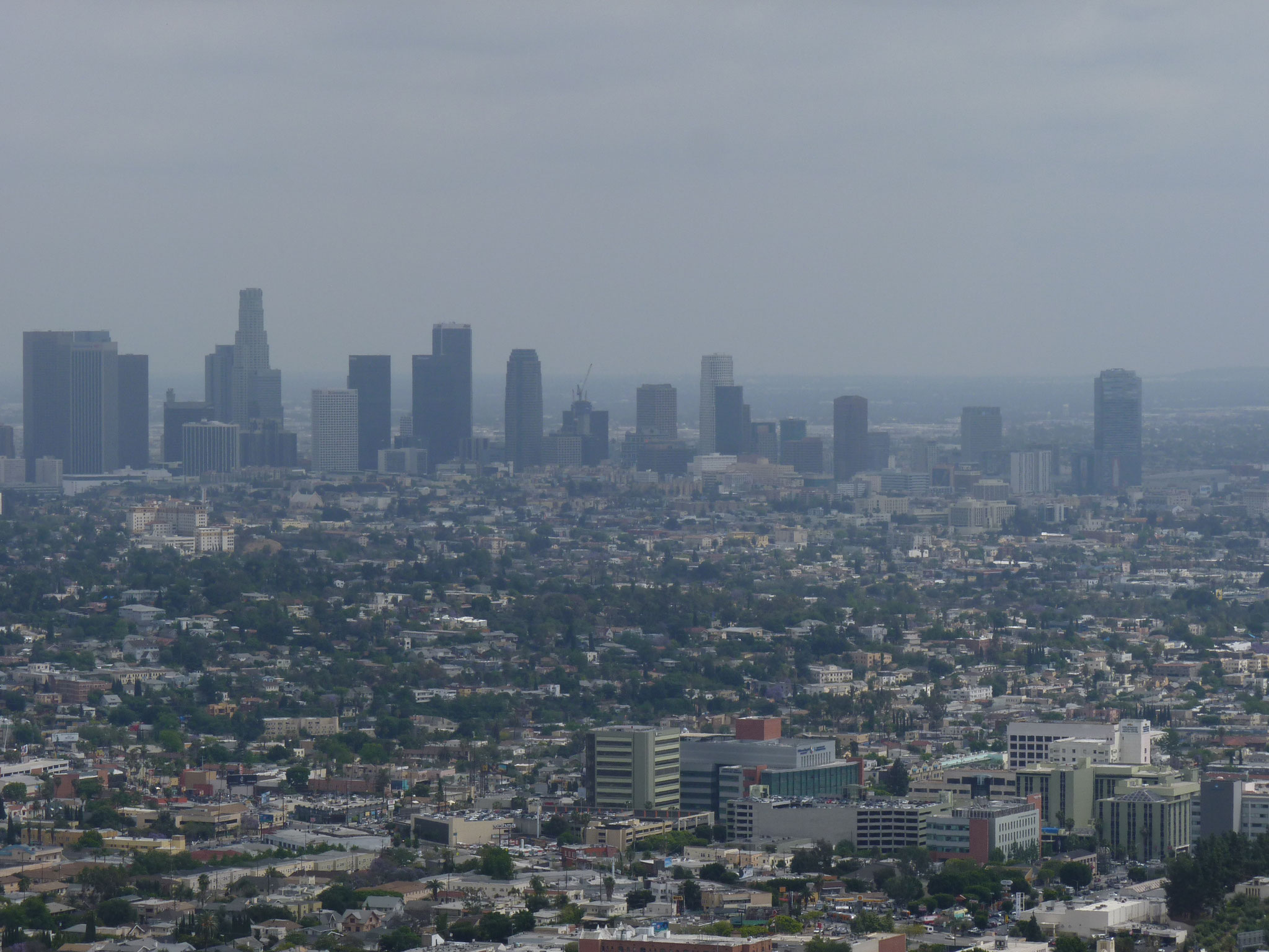 Vue sur le Downtown du Griffith Observatory