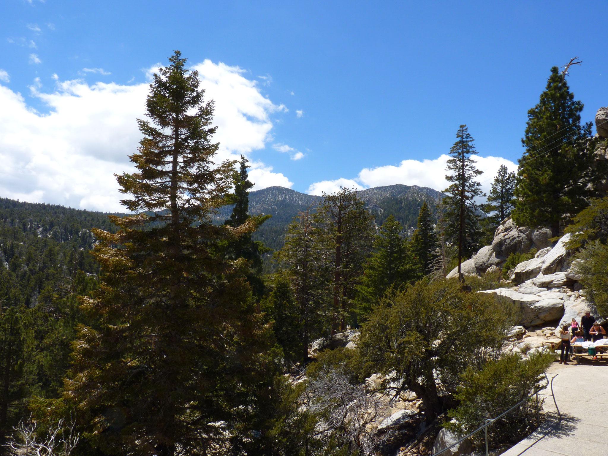 Mont San Jacinto