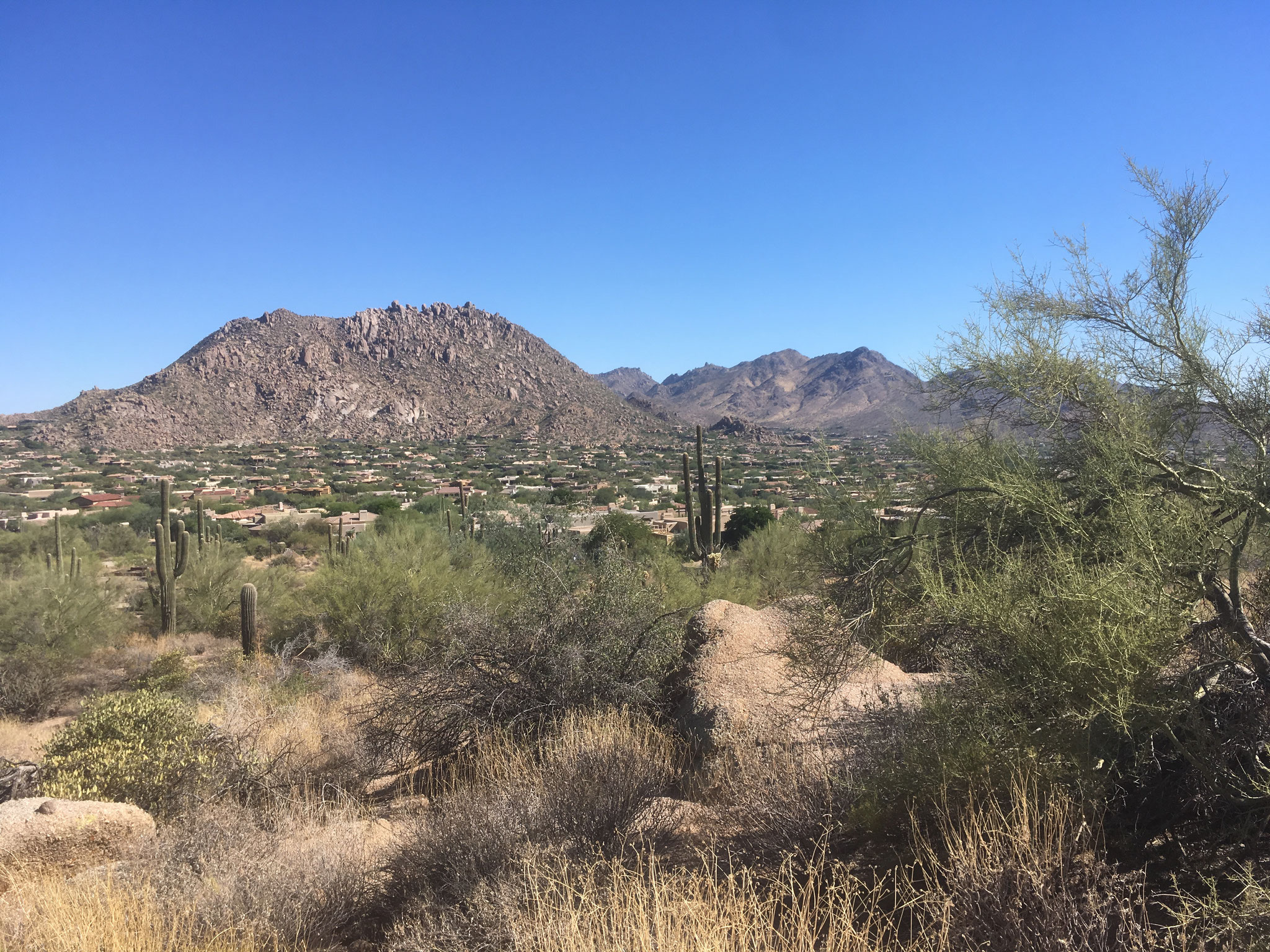 Mc Dowell Sonoran Preserve (vue Scottsdale)