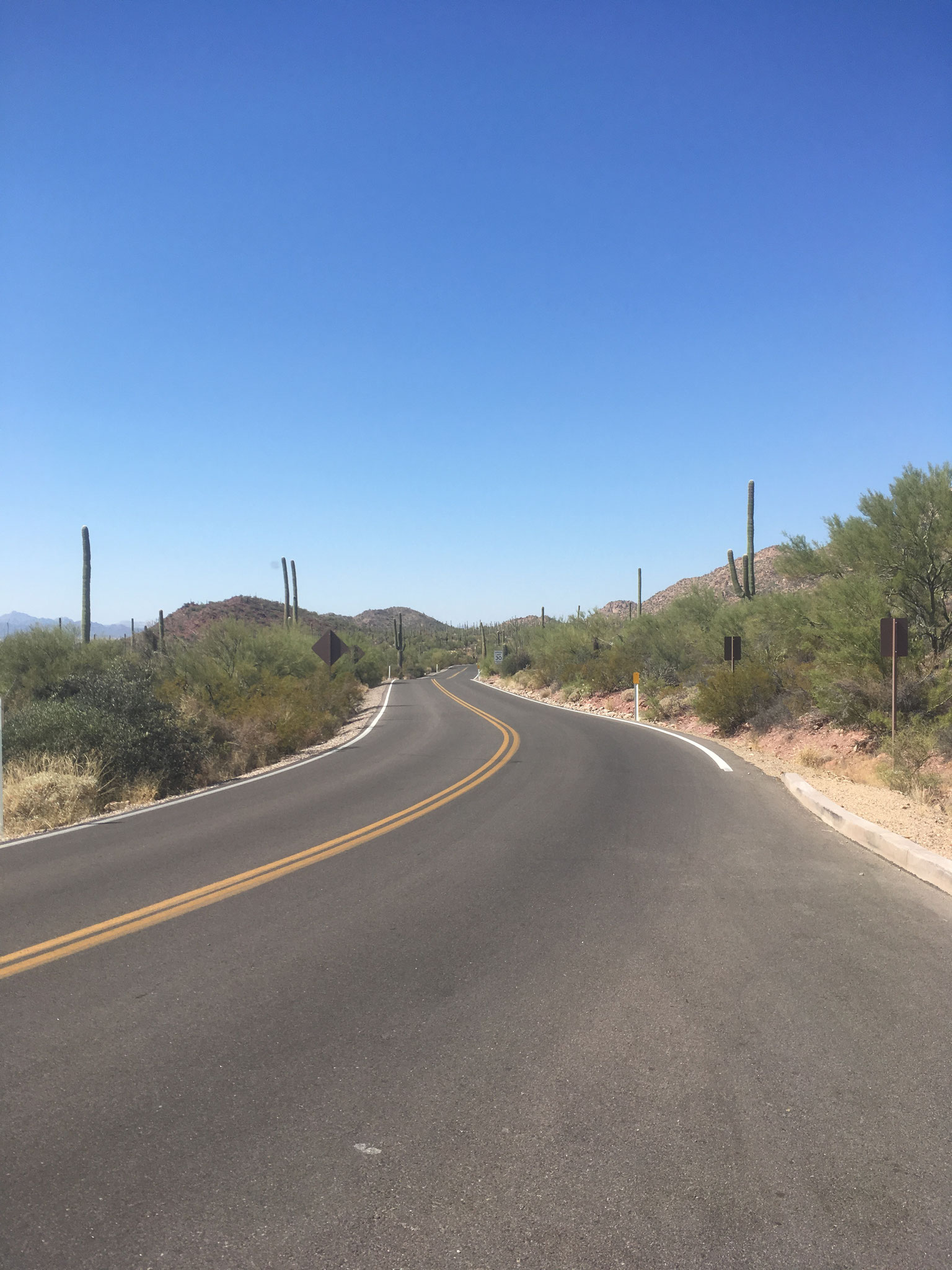 Sur la route du Saguaro National Park