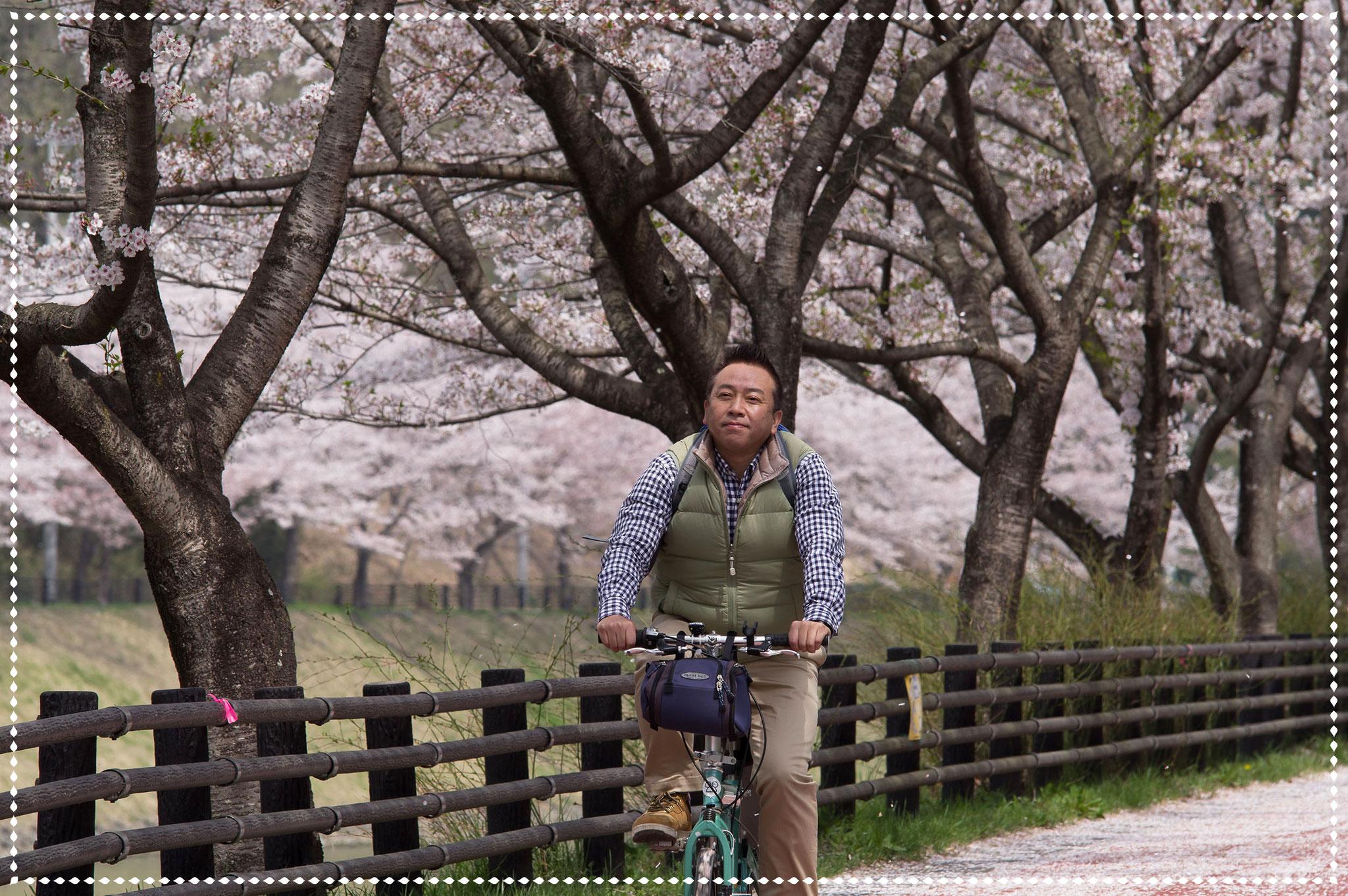 桜吹雪に迎えられ