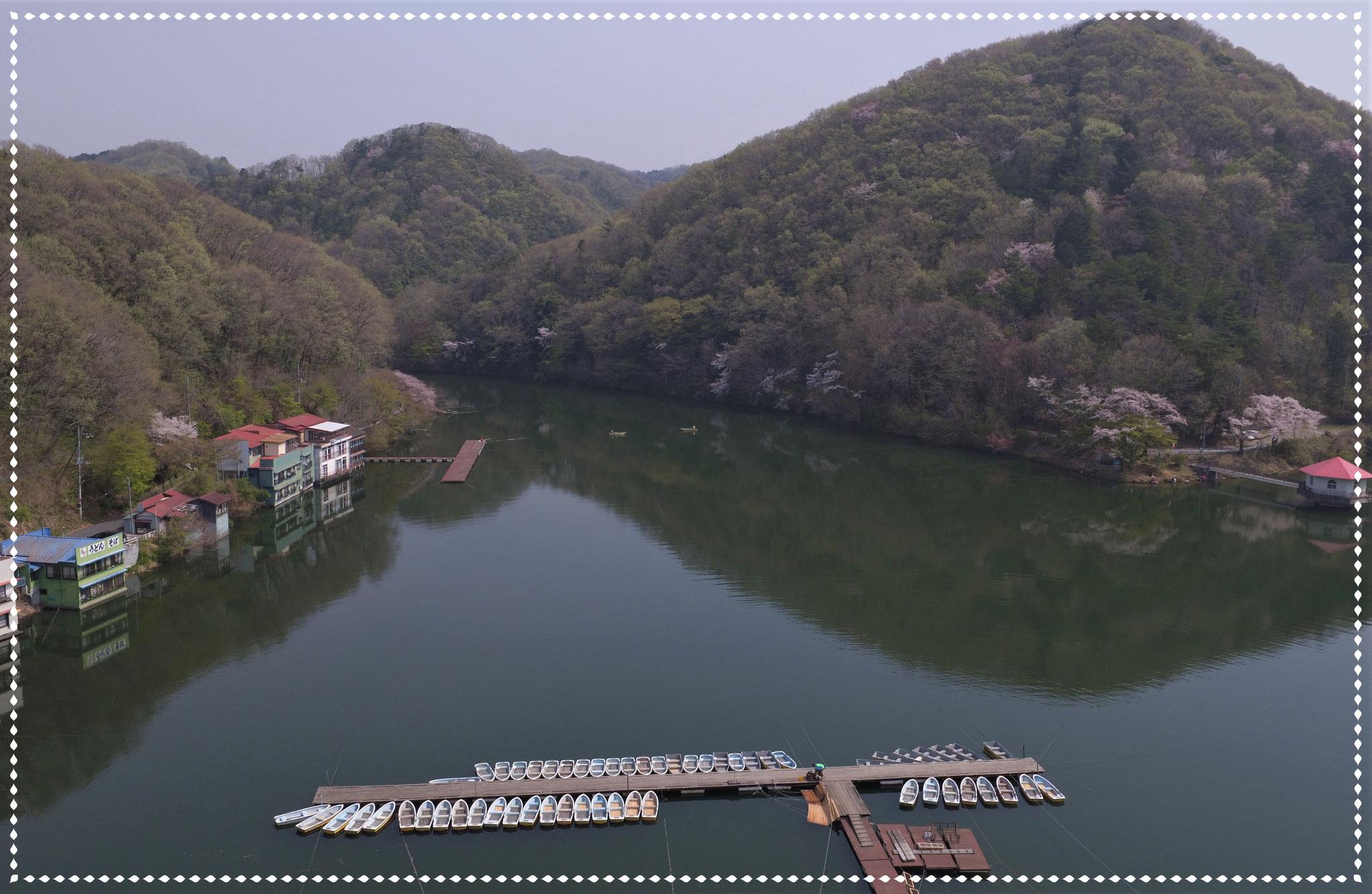 春の円良田湖(つぶらたこ)