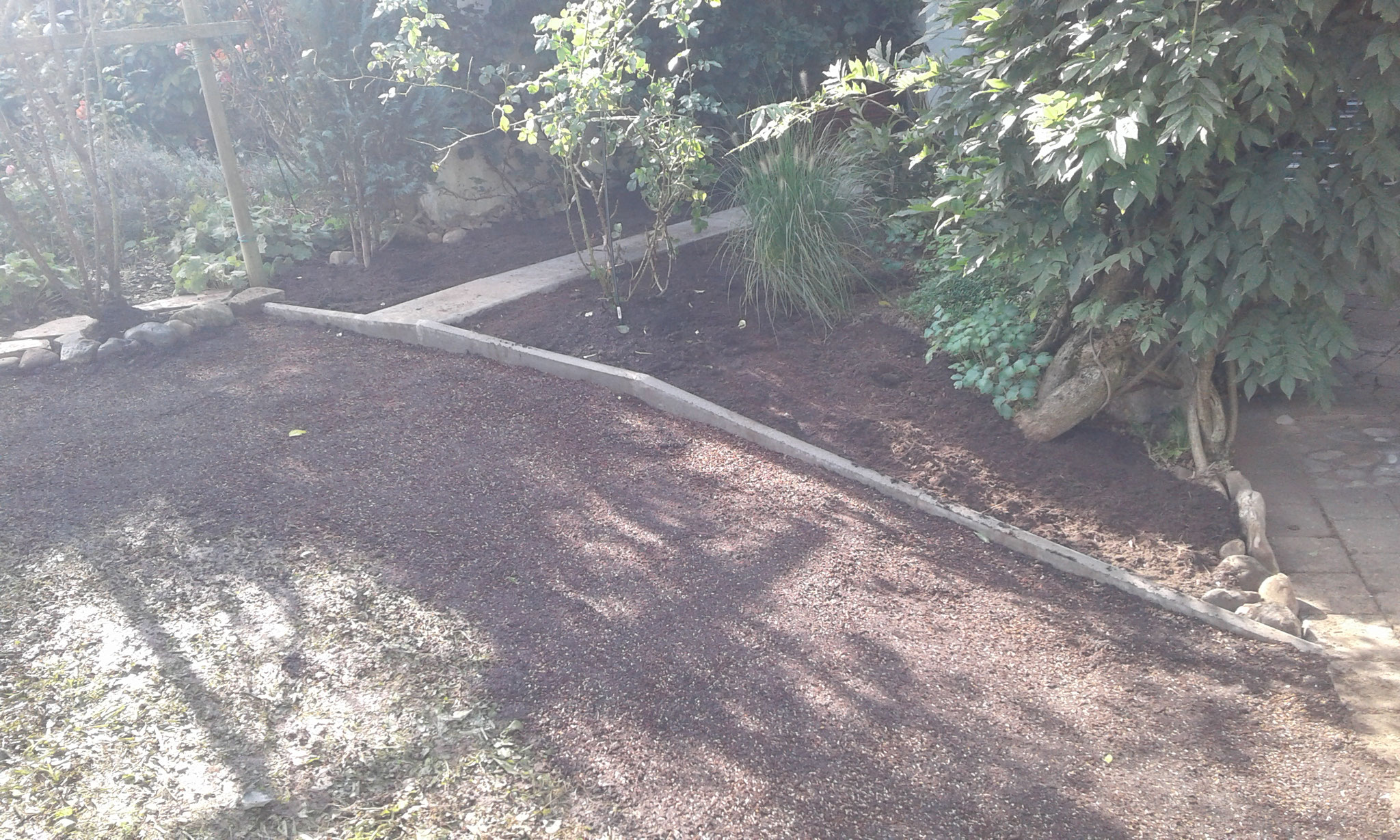 Beet- und Rasen-Neuanlage Wangen - NACHHER