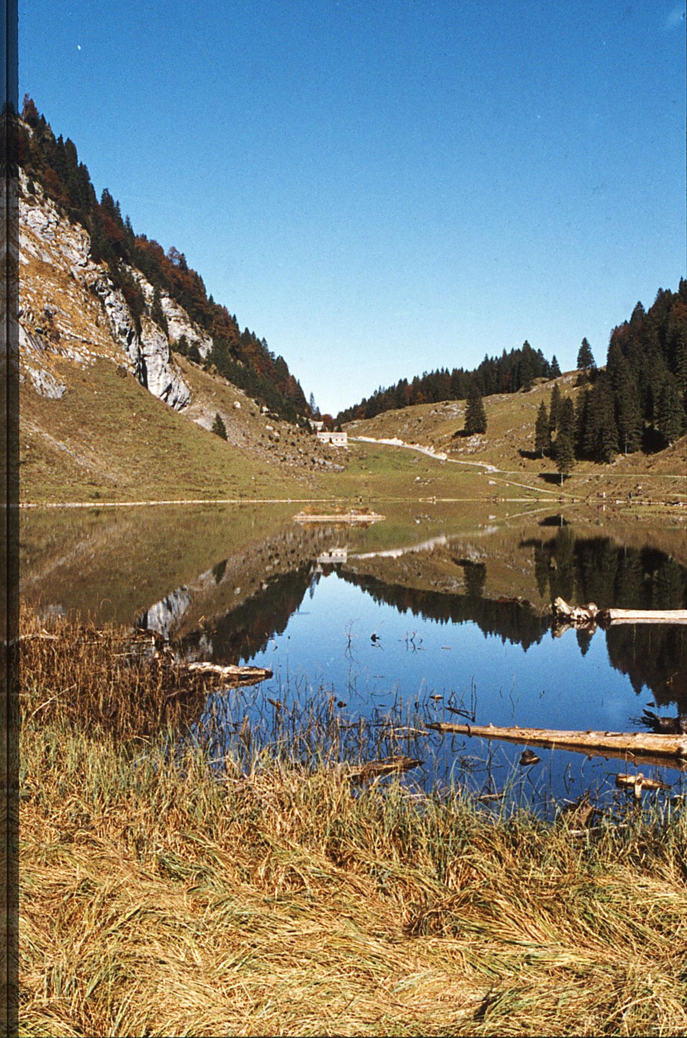 Spiegel am Talalpsee von Süden her, 01. Nov.