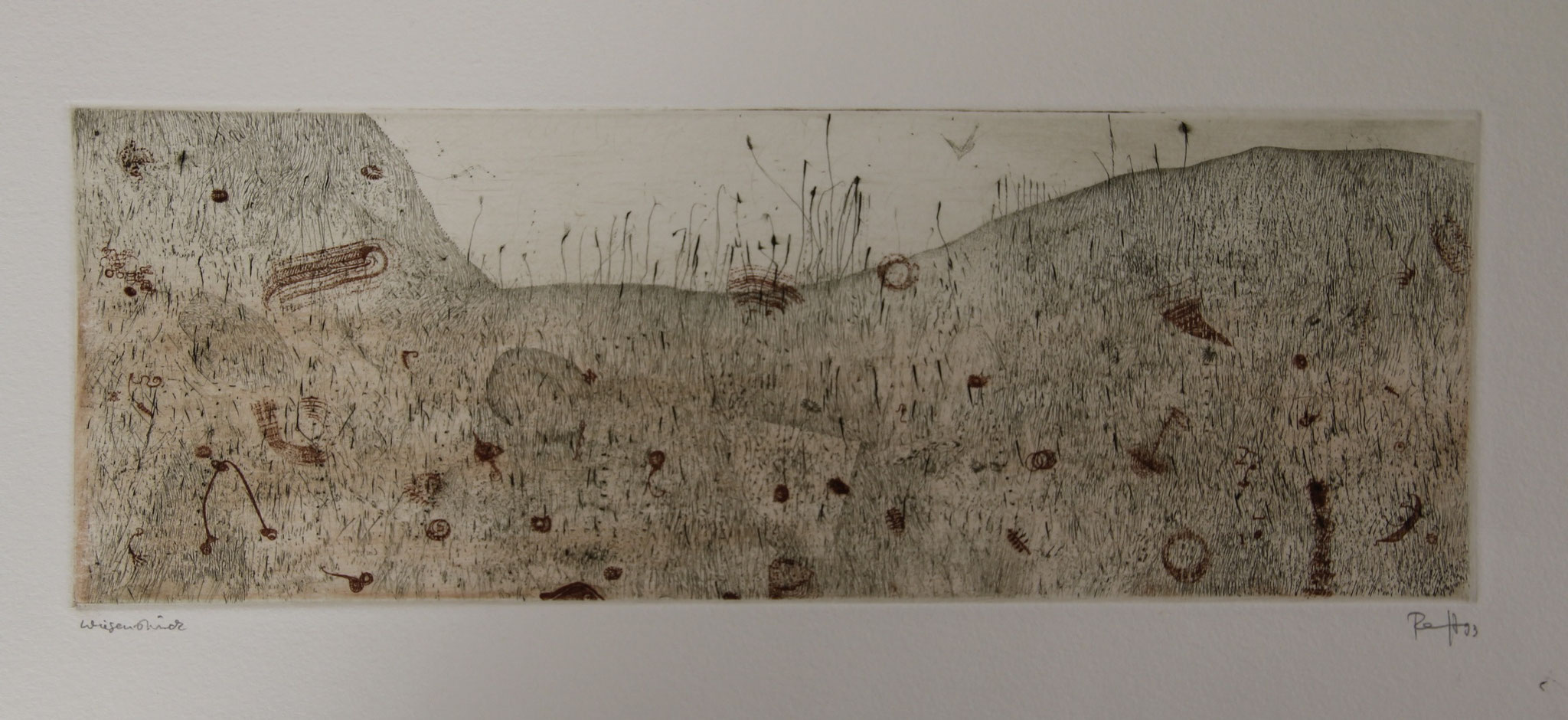 Thomas Ranft     WIESENSTÜCK   Farbradierung     9,5 x 27,0    1993