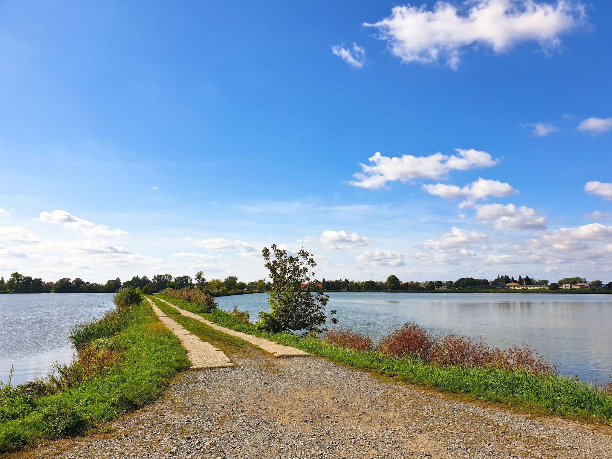 Hradecký rybník, wir fahren übers Wasser