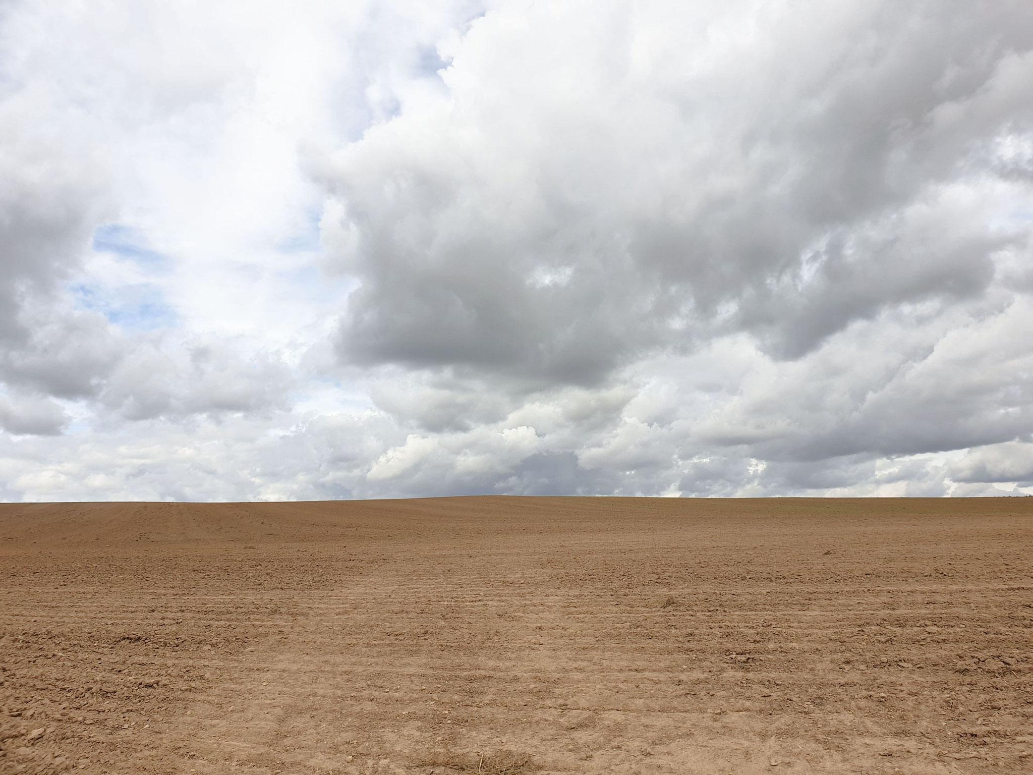Landwirtschaftliche Trostlosigkeit