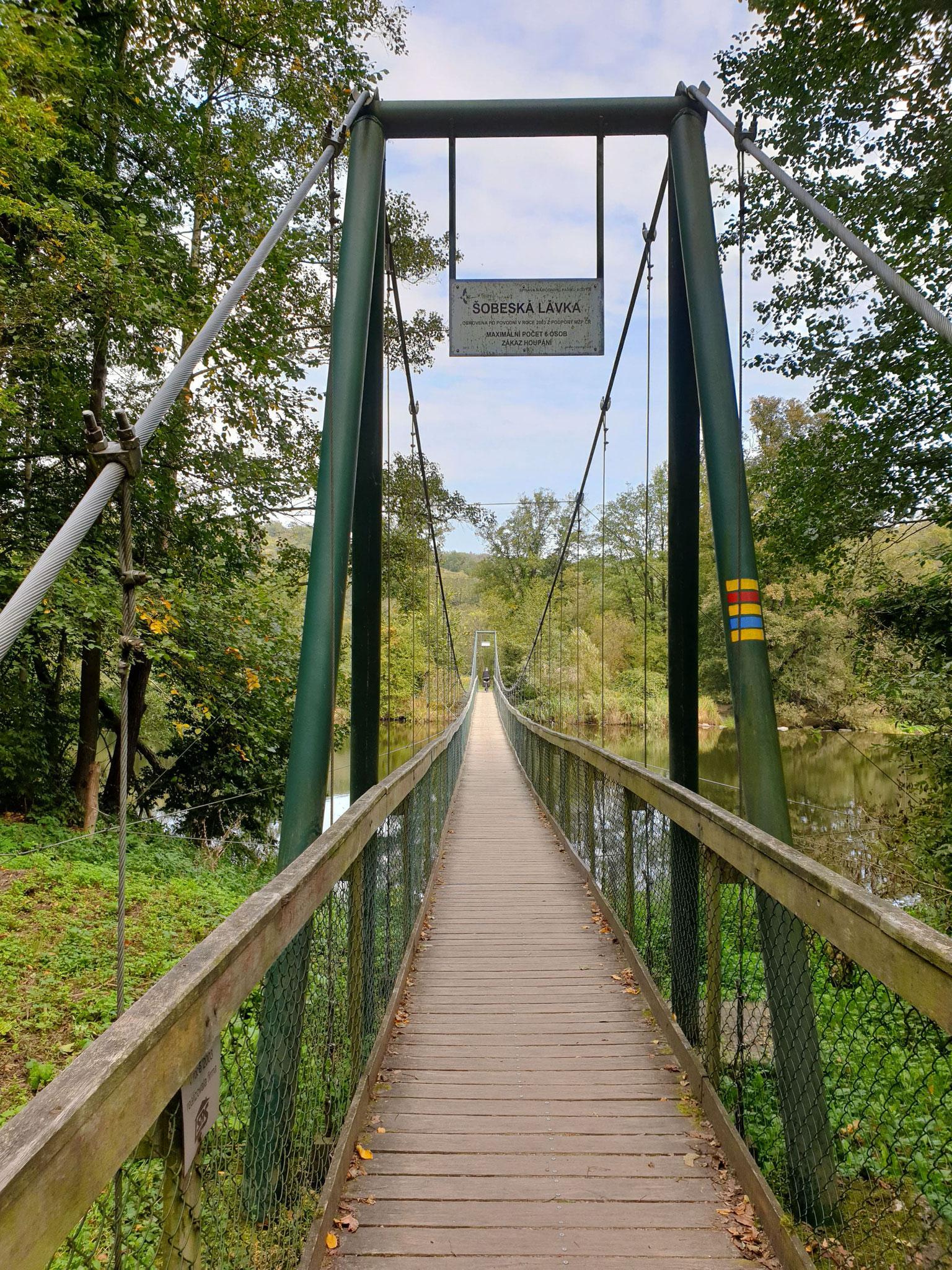 Hängebrücke im Nationalpark Thayatal