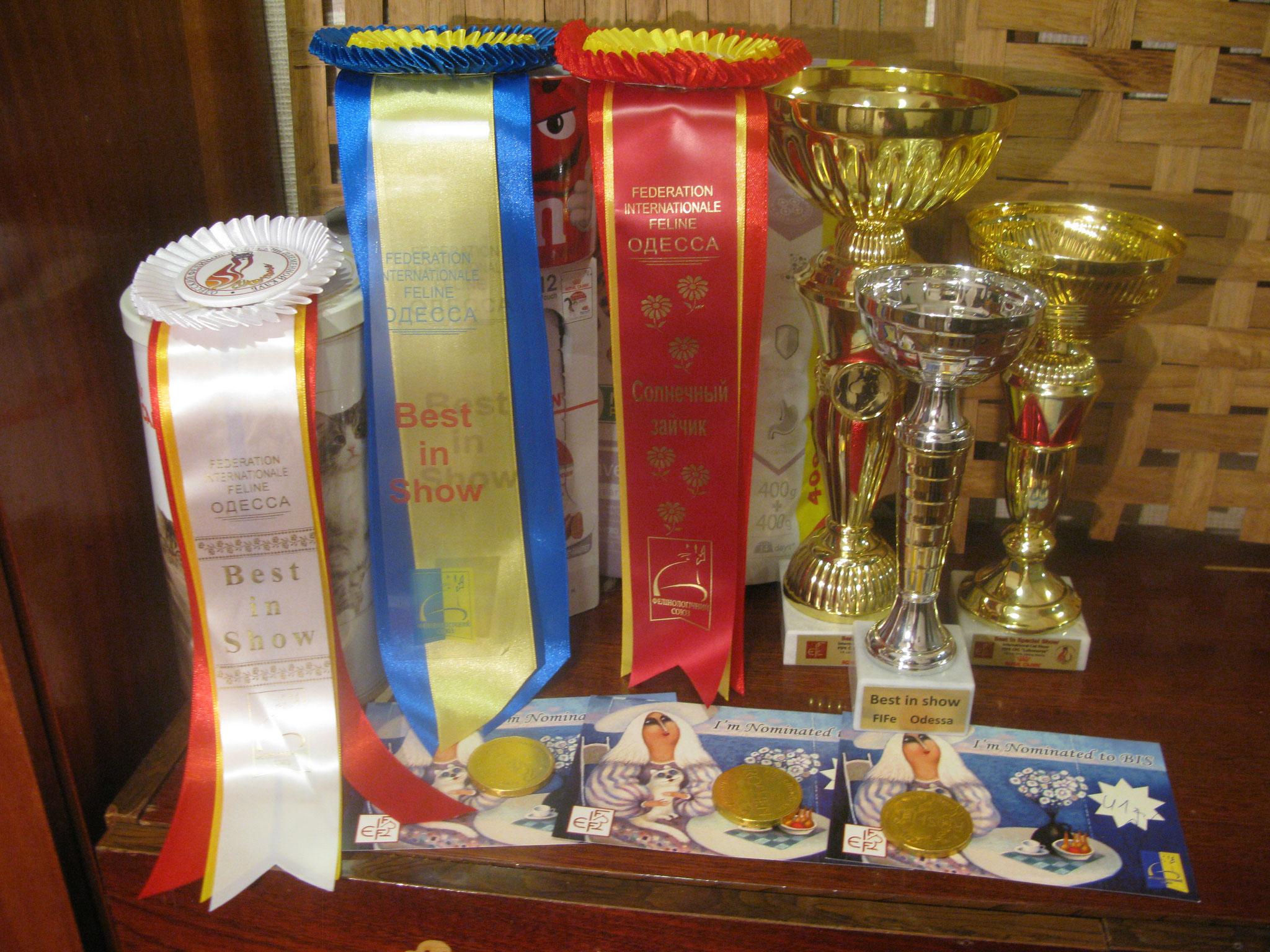 наши трофеи