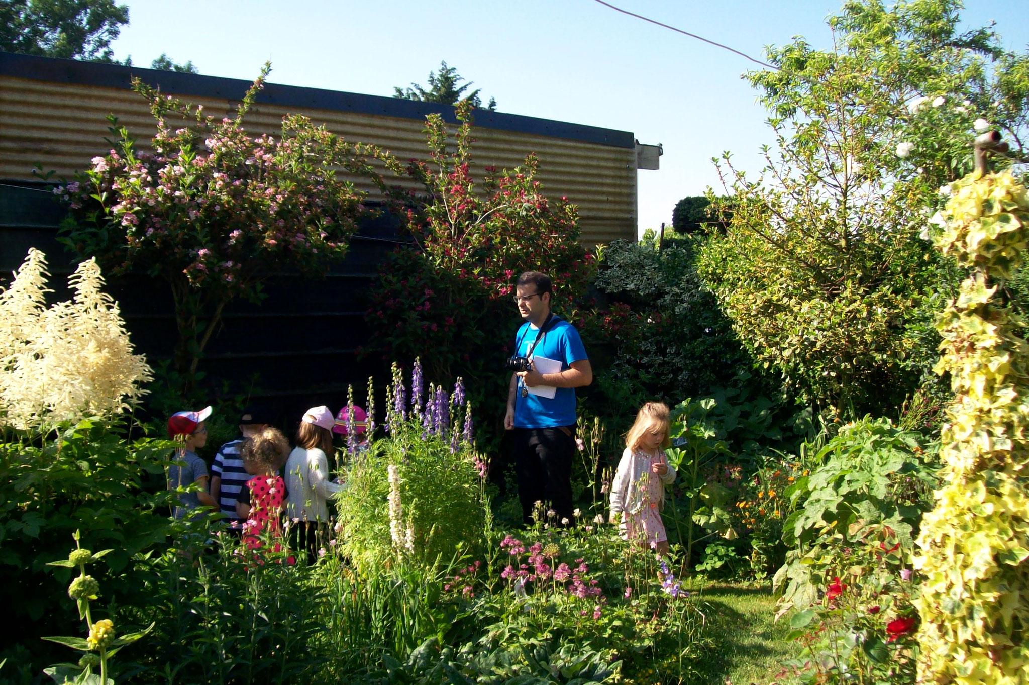 Frais que faire au jardin sabakunohana - Que faire au jardin en novembre ...