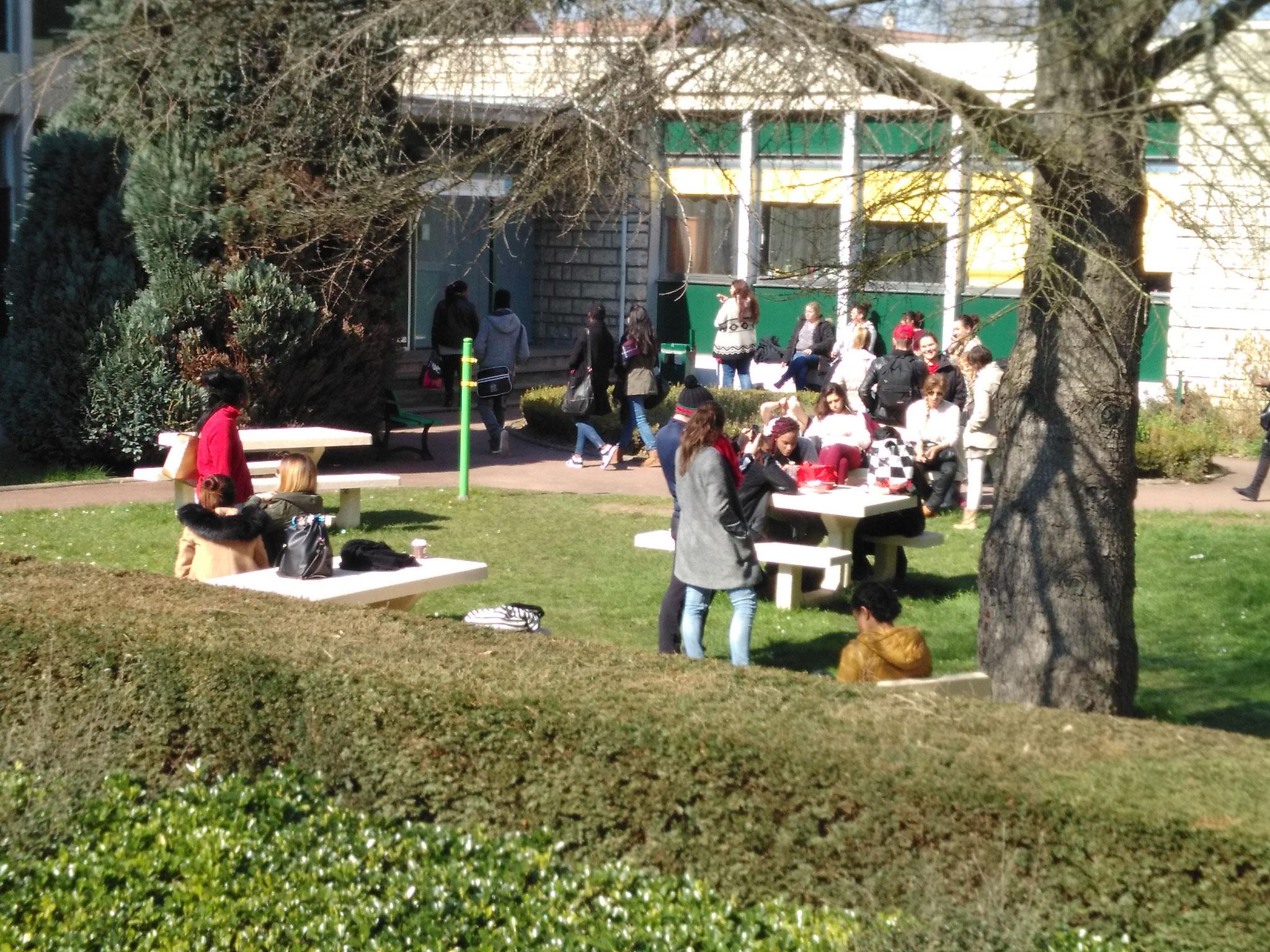 Salon de jardin extérieur pour déjeuner