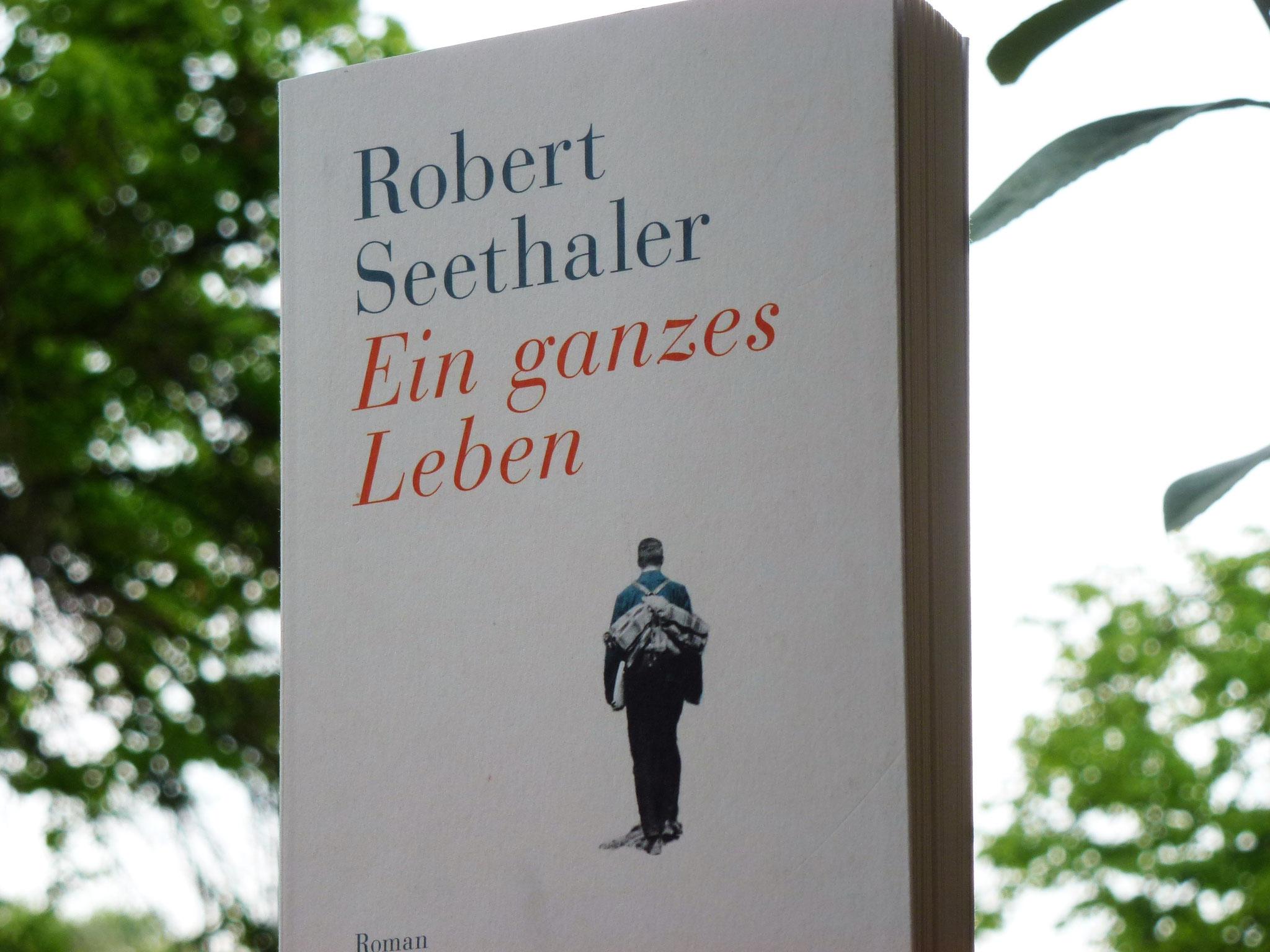 """Auf dem vierten Platz steht der kurze, aber desto tiefsinnigere Roman """"Ein ganzes Lebens"""" von Robert Seethaler."""
