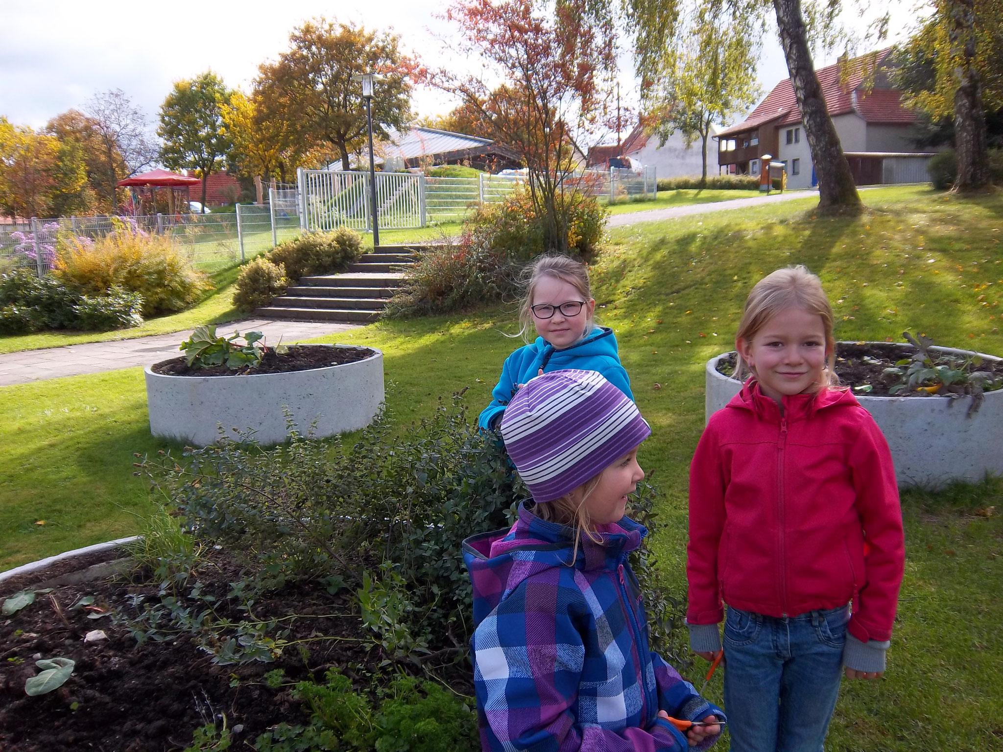 Im Schulgarten