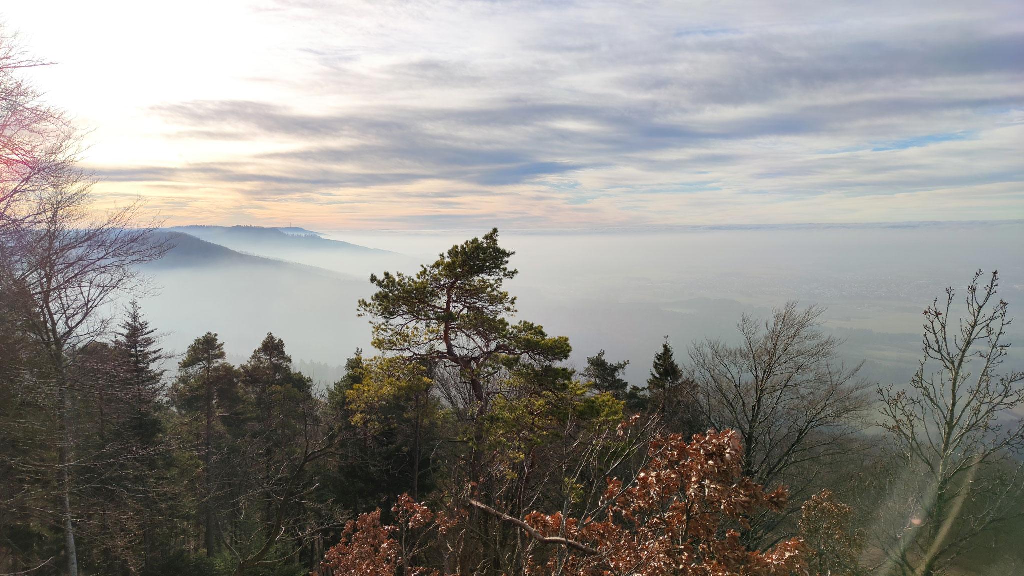 Aussicht vom Zeller Horn über den Wolken