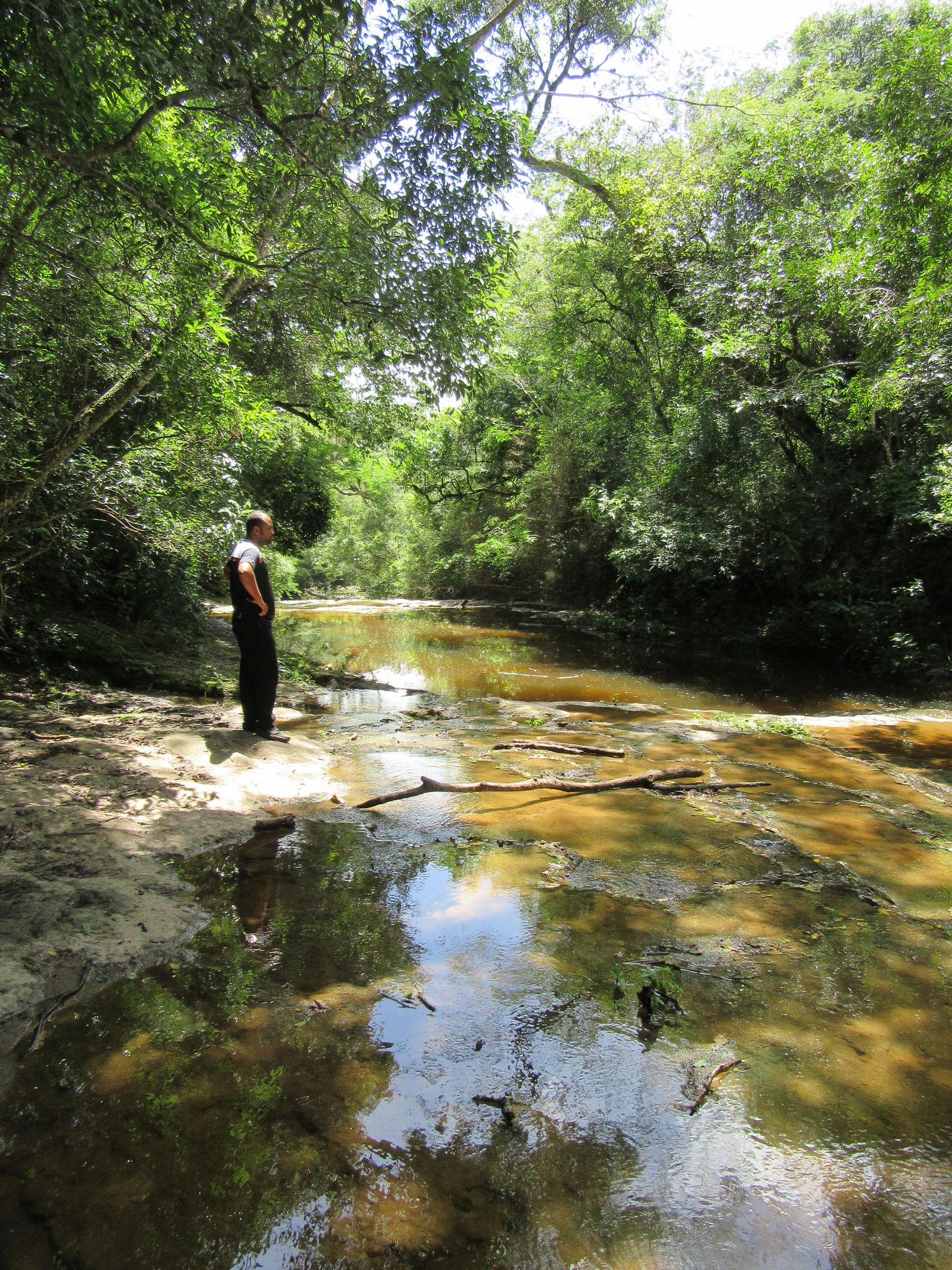 Ein Bach reinsten Quellwassers schlängelt sich durch unser Hochplateau