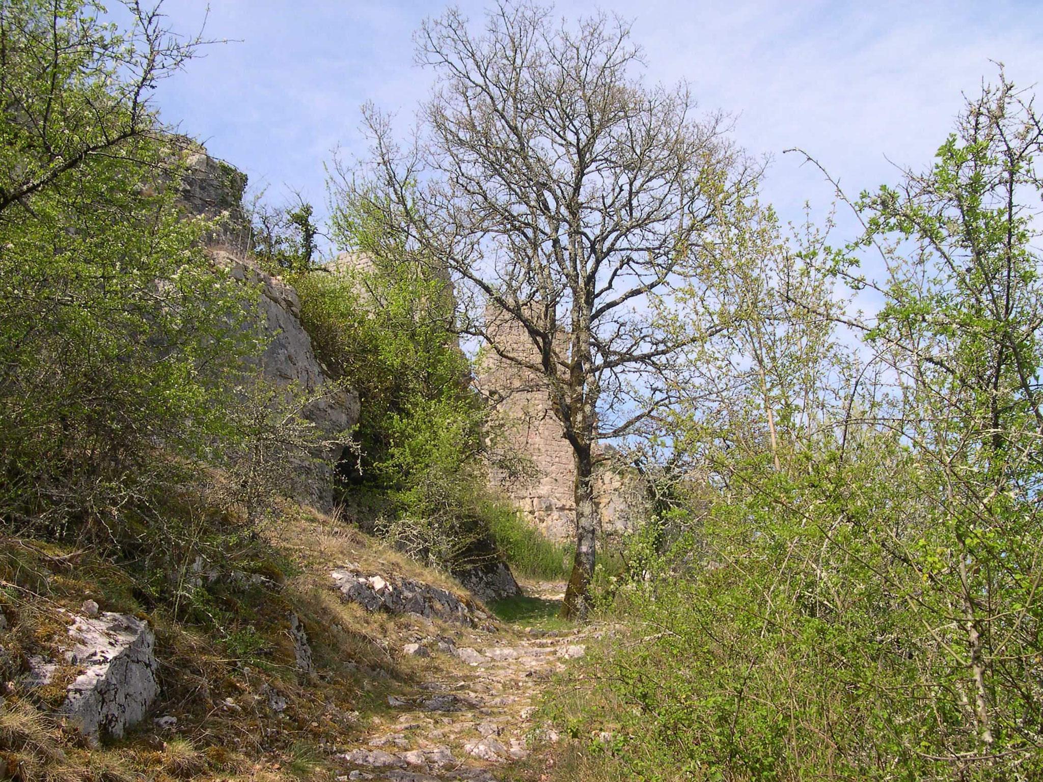 Château de Taillefer en vue
