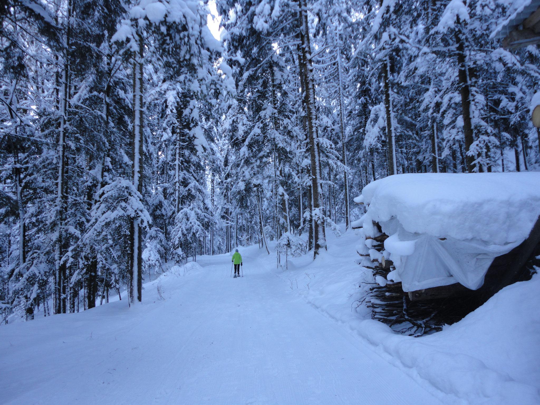Winterwandern Umgebung Haus Ronacher