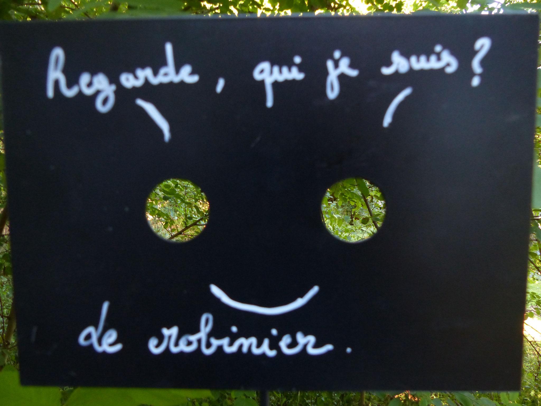 art et environnement au jardin botanique