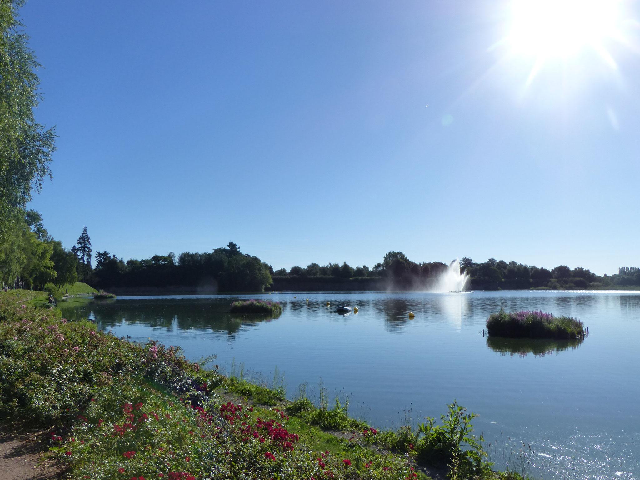 les îlots fleuris sur l'Etang de 12 hectares