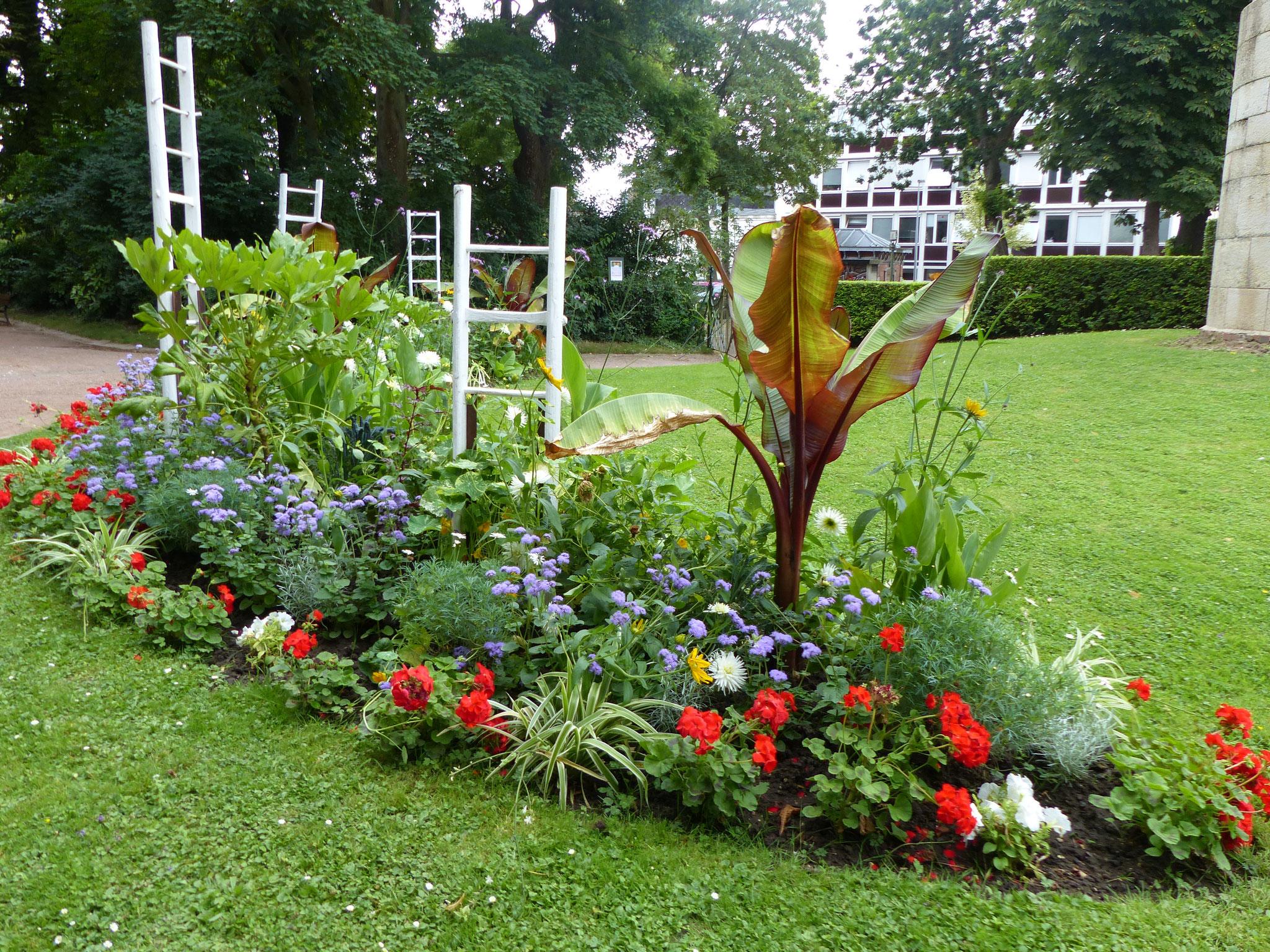 Les échelles des tranchées subliment le fleurissement