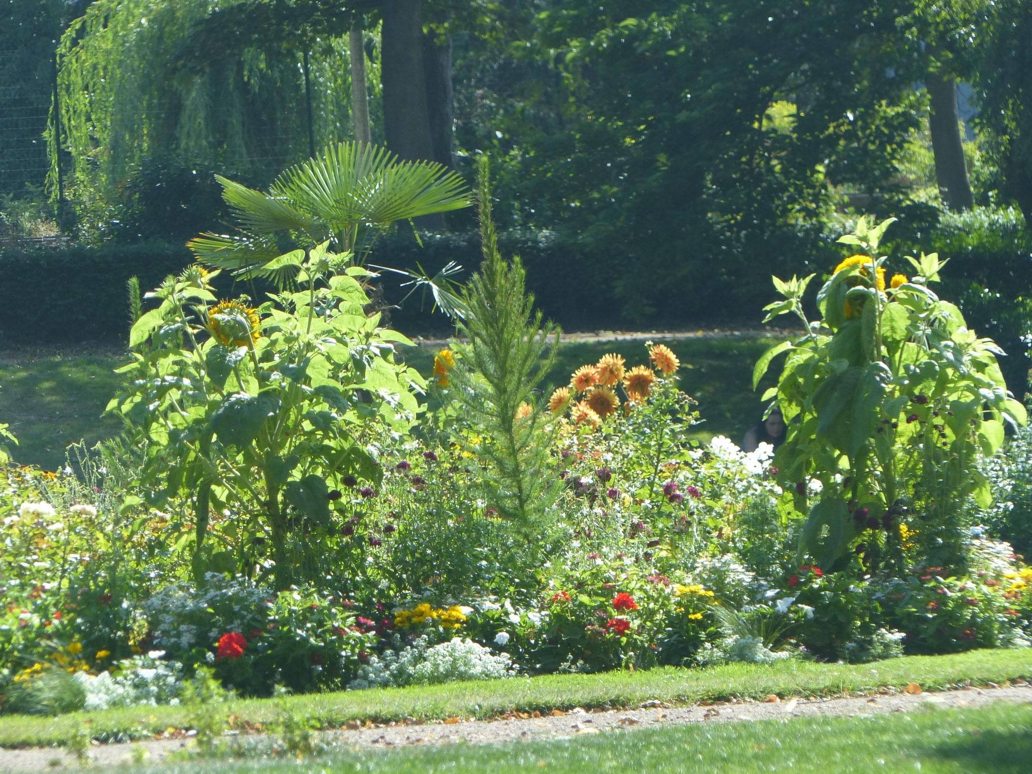 Fleurissement du parc Richelieu