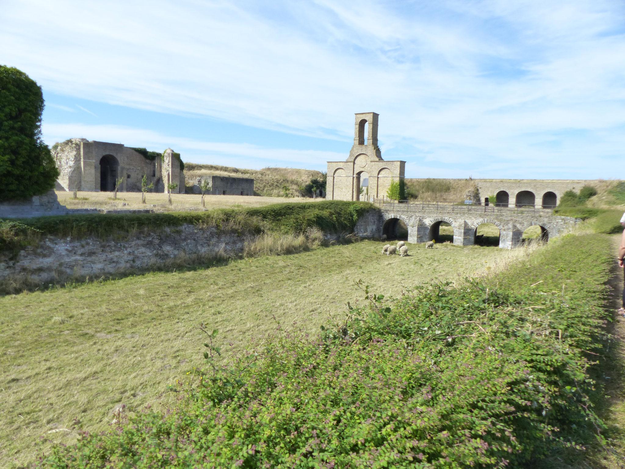 le Vieux Fort: un esprit de biodiversité