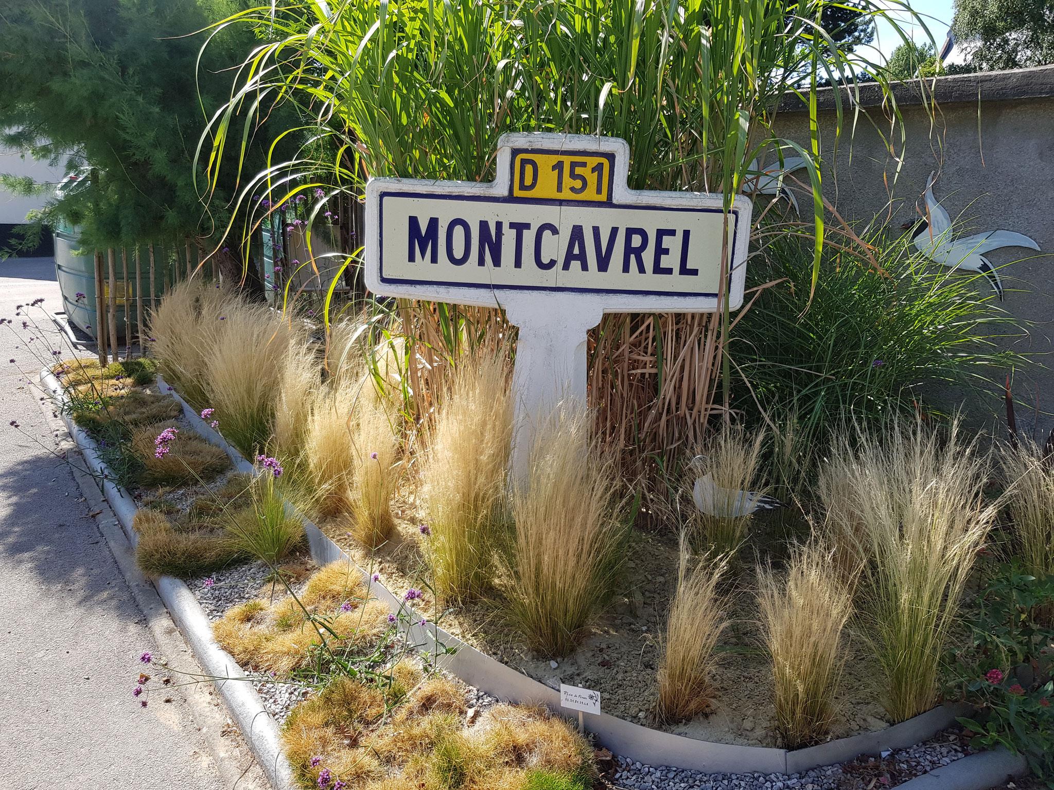 "Montcavrel ""1 Fleur"""