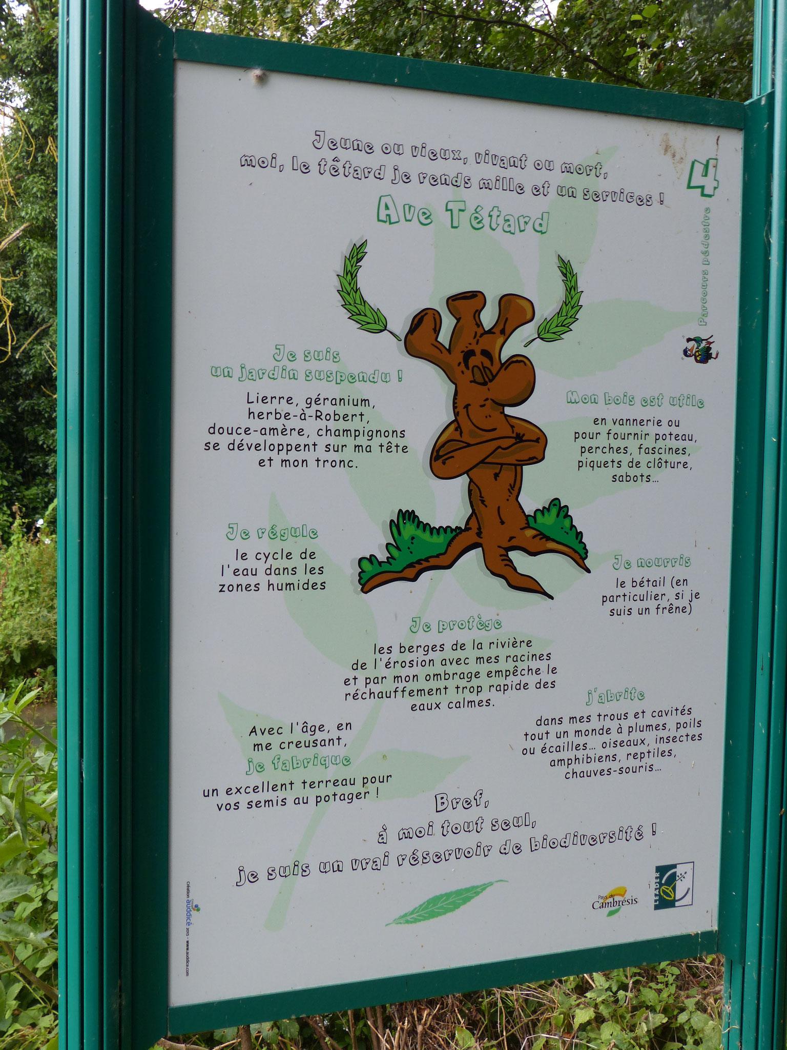Panneau pédagogique à Noyelles-sur-Escaut