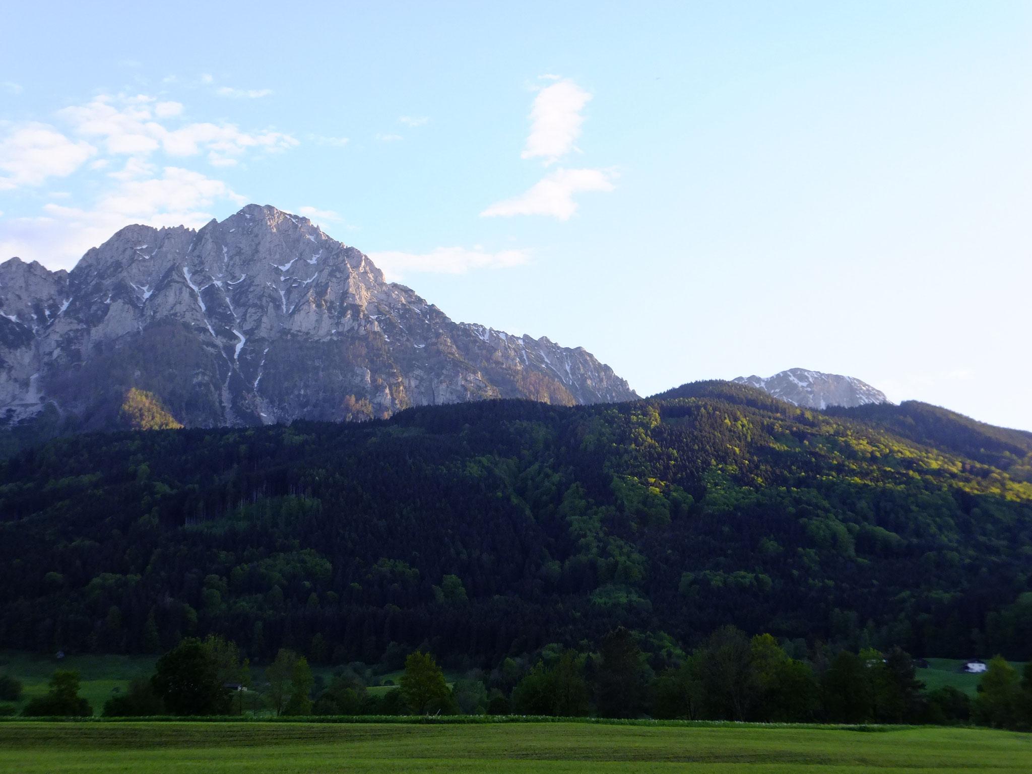 Blick Richtung Staufen mit Bergwald im Frühling