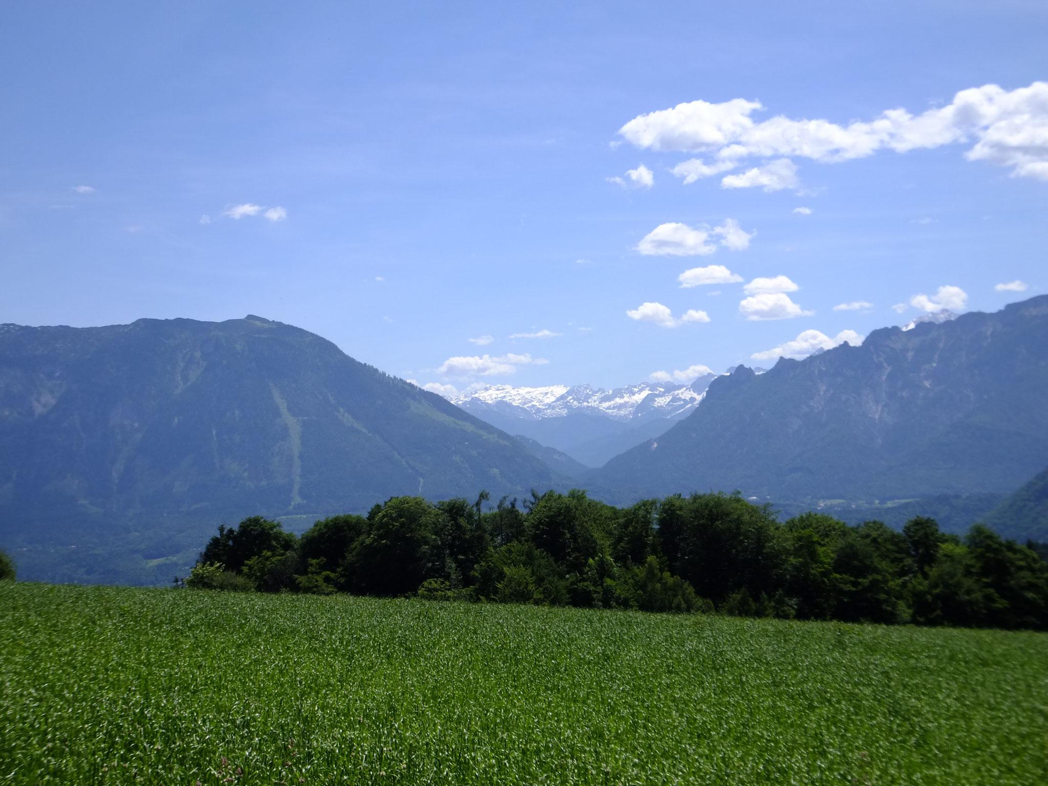 Blick von der Stroblalm Richtung Berchtesgadener Alpen