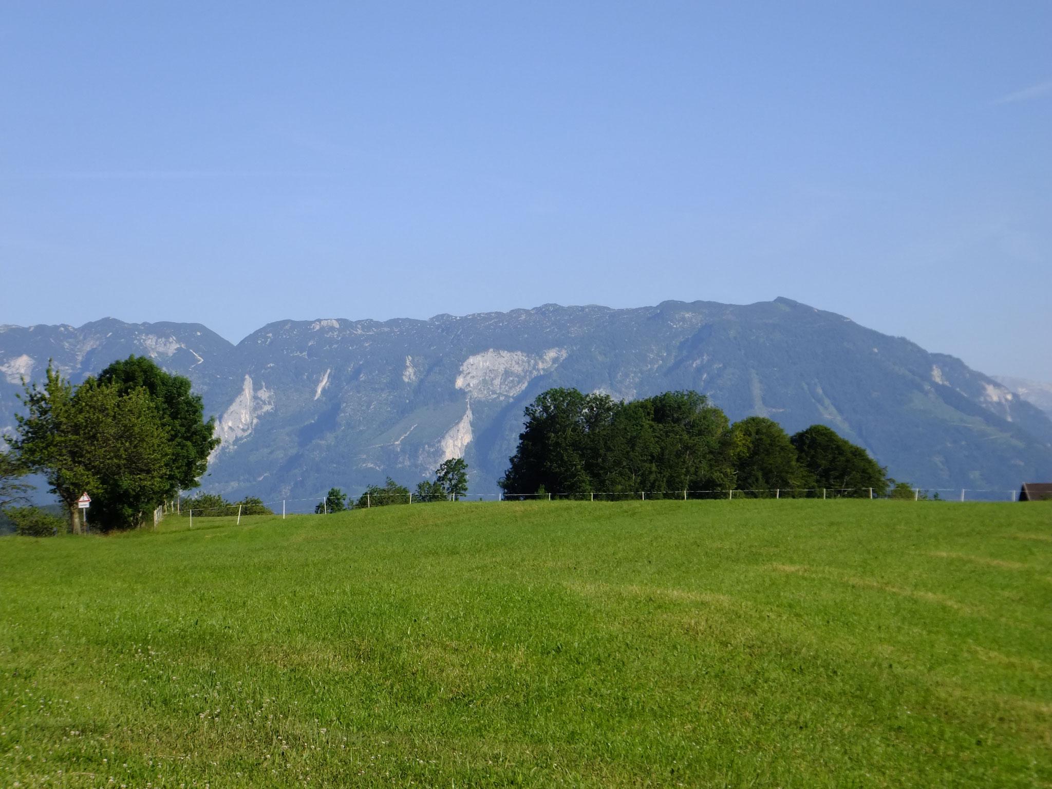 Blick vom Gasthaus Mayerhofen Richtung Untersberg
