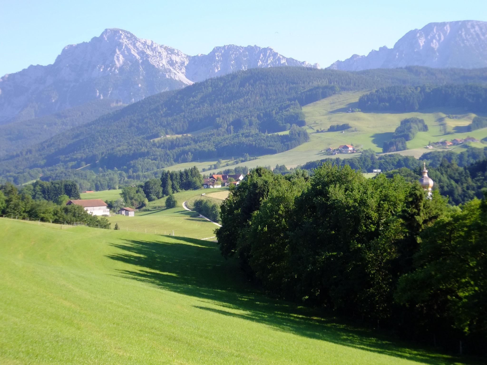 Blick vom Gasthaus Mayerhofen Richtung Staufen