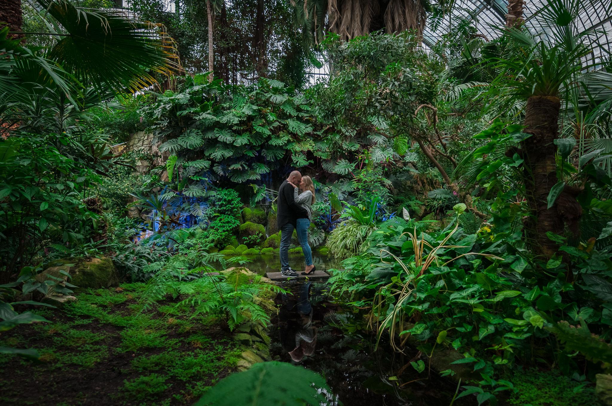 Romantisches Paarshooting im Palmengarten von Frankfurt am Main