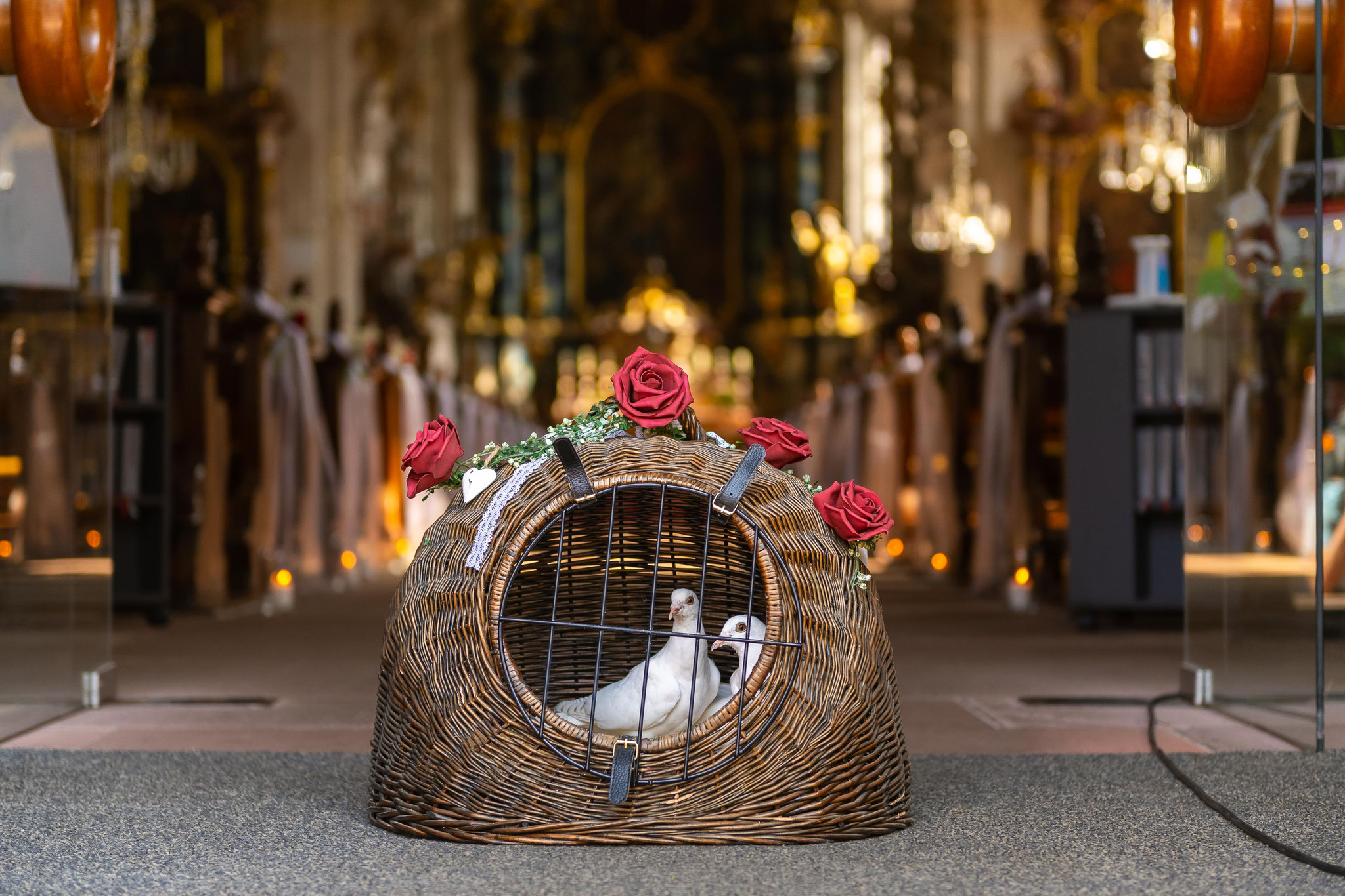 Tauben zum Hochzeitstag Tolle Aufnahmen für Foto und Video