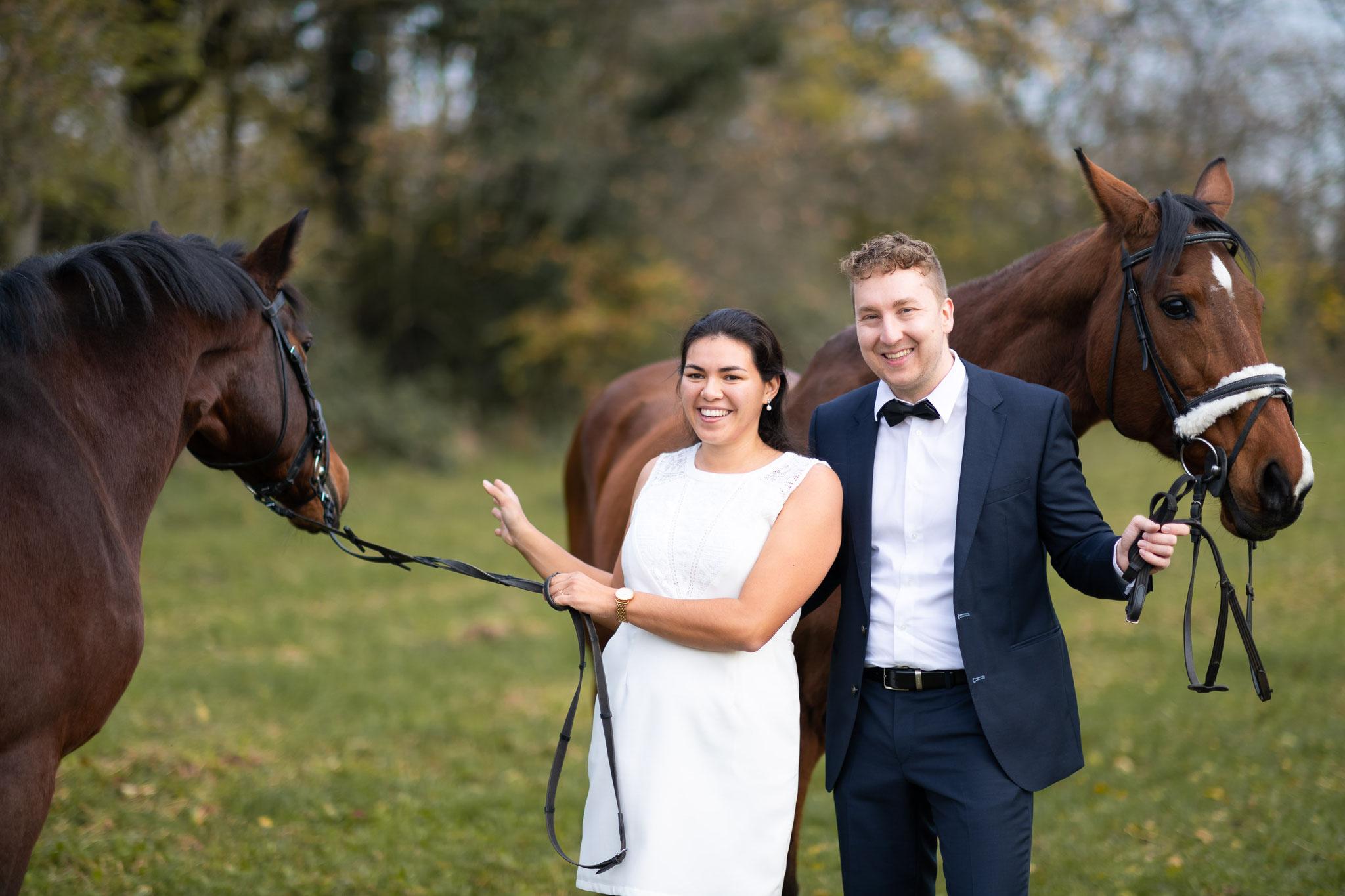 Mit Liebe zu den Pferden