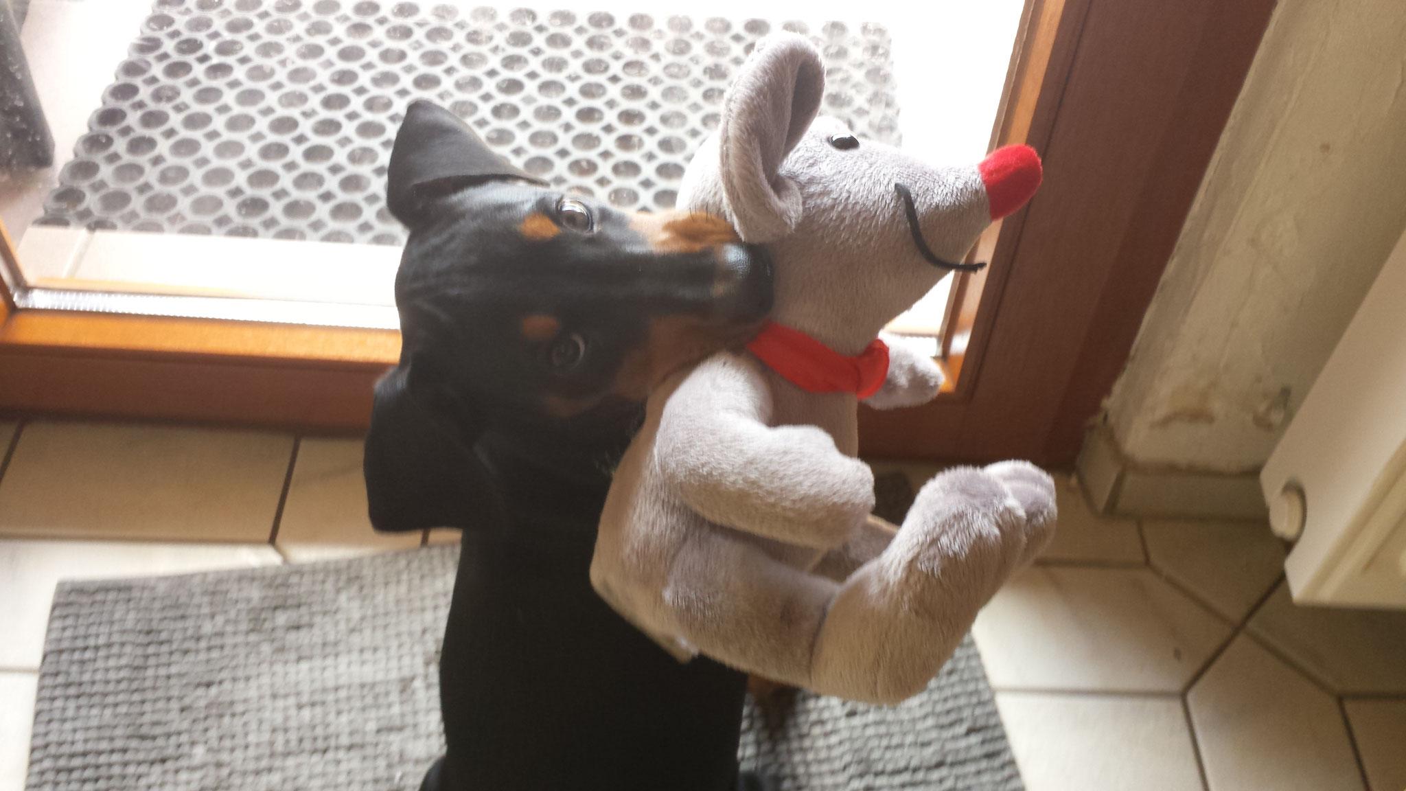 Die Maus ist erledigt